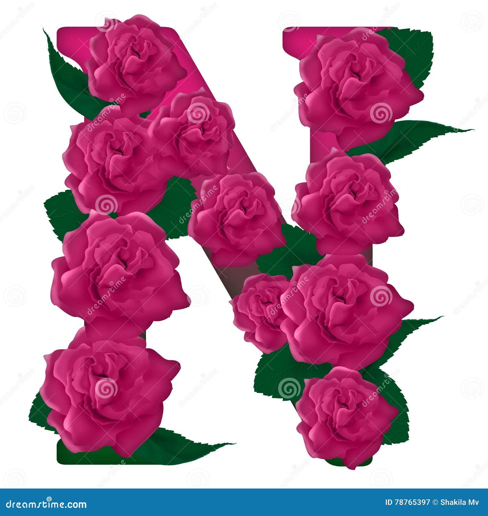 Letter N Cute Flower Illustration Stock Image - Illustration of flowers, alphabet: 78765397