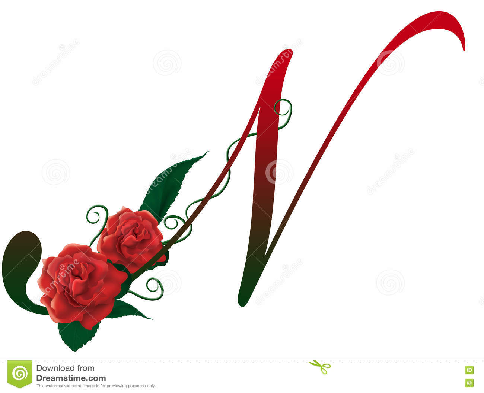 Letter N Floral Illustration Stock Photo - Illustration of floral, flowery: 78766222