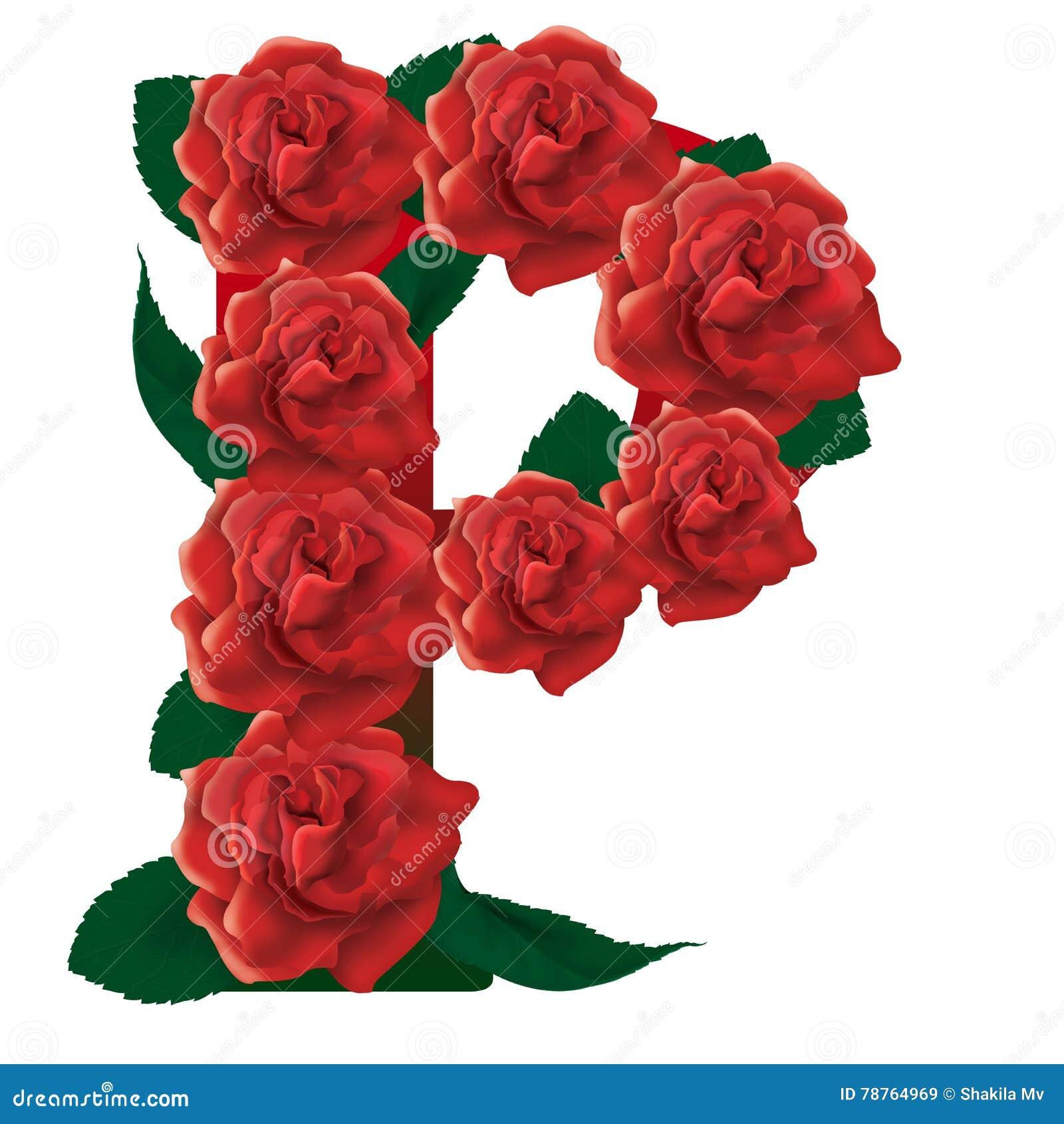 Letter P Red Roses Illustration Stock Image - Illustration of flowers, decor: 78764969