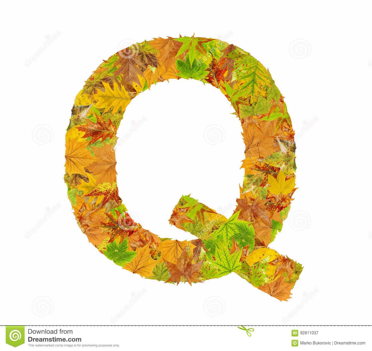 the letter q of alphabet made of autumn leaves