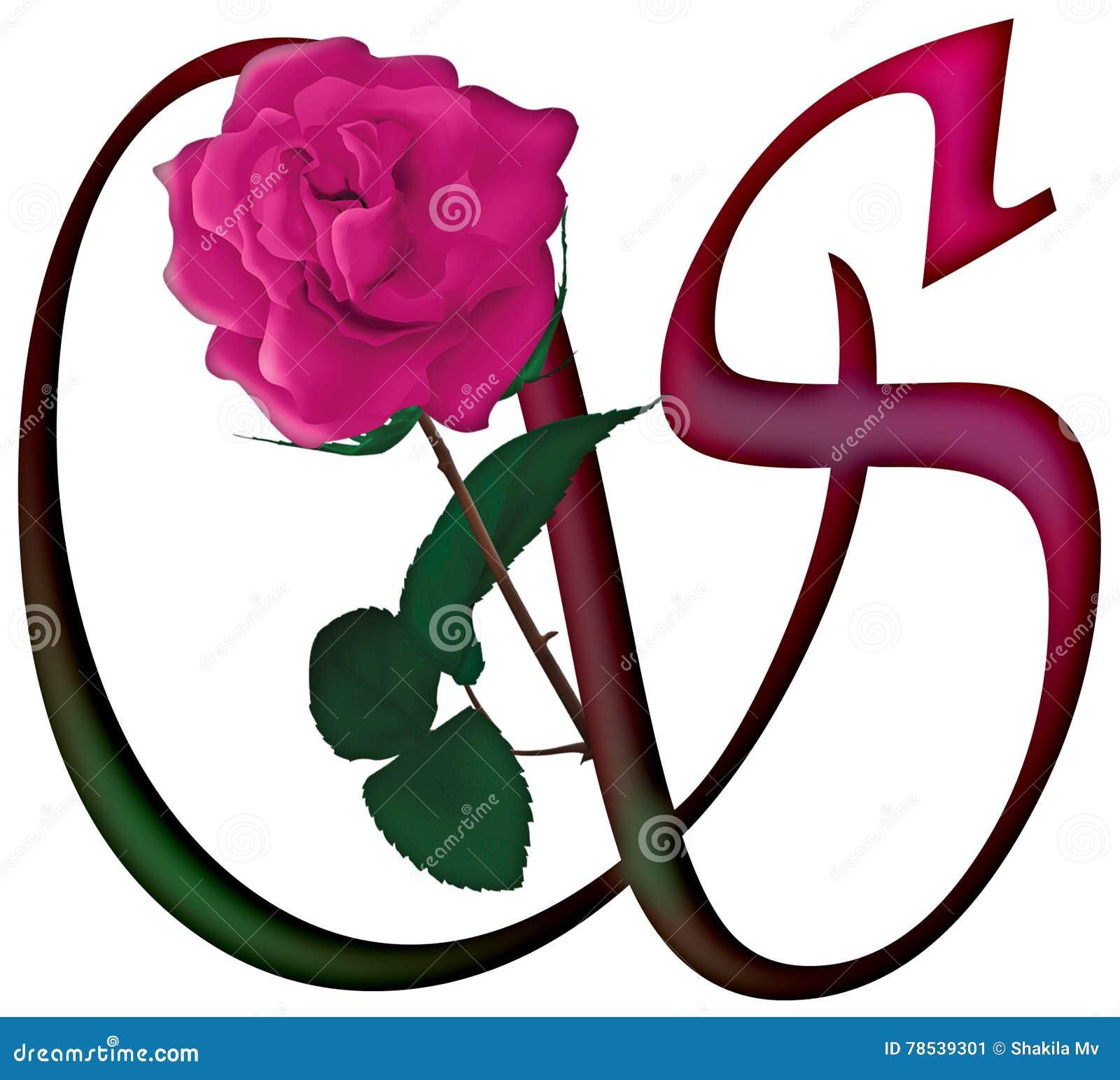 letter s floral font