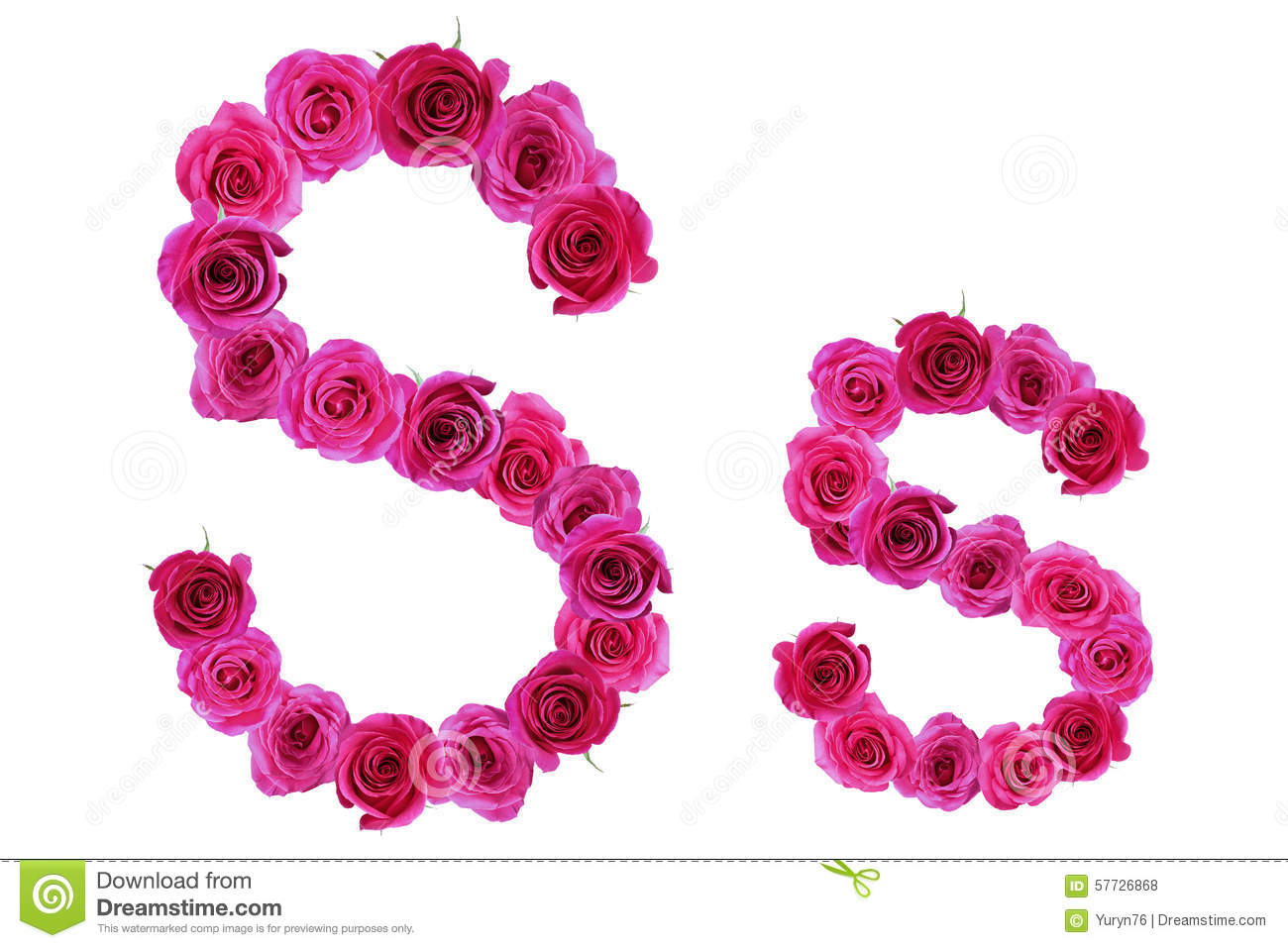 Letter s of roses stock photo. Image of symbol, organic ...