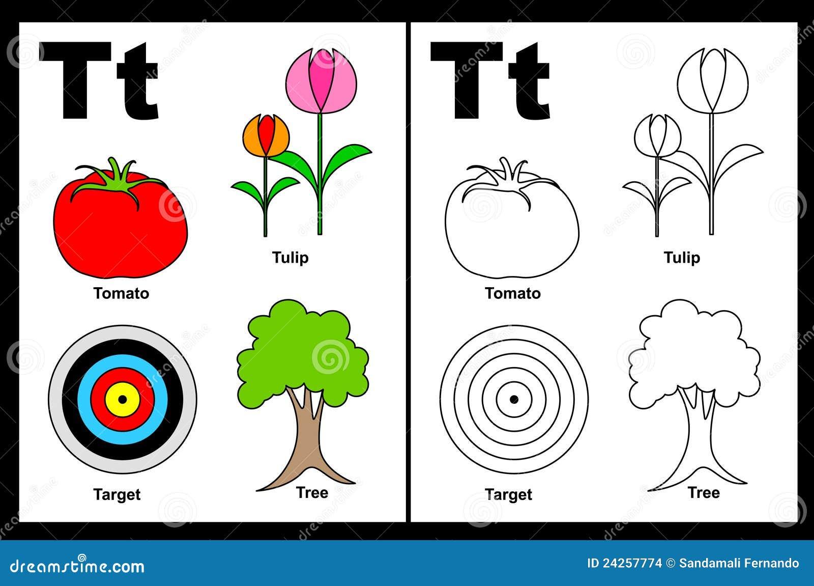 Letter T Worksheet Stock Images Image 24257774