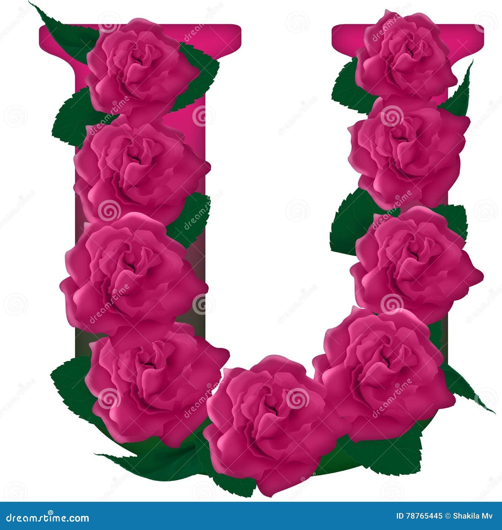 Letter U Cute Flower Illustration Stock Image Illustration Of