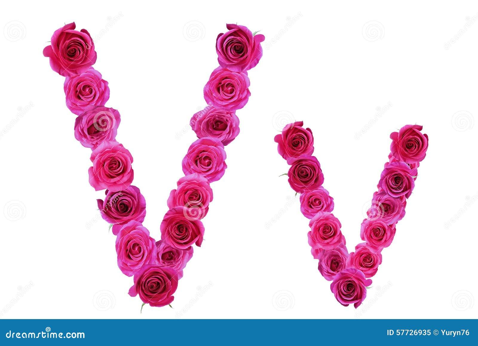 Letter V Roses Stock Image