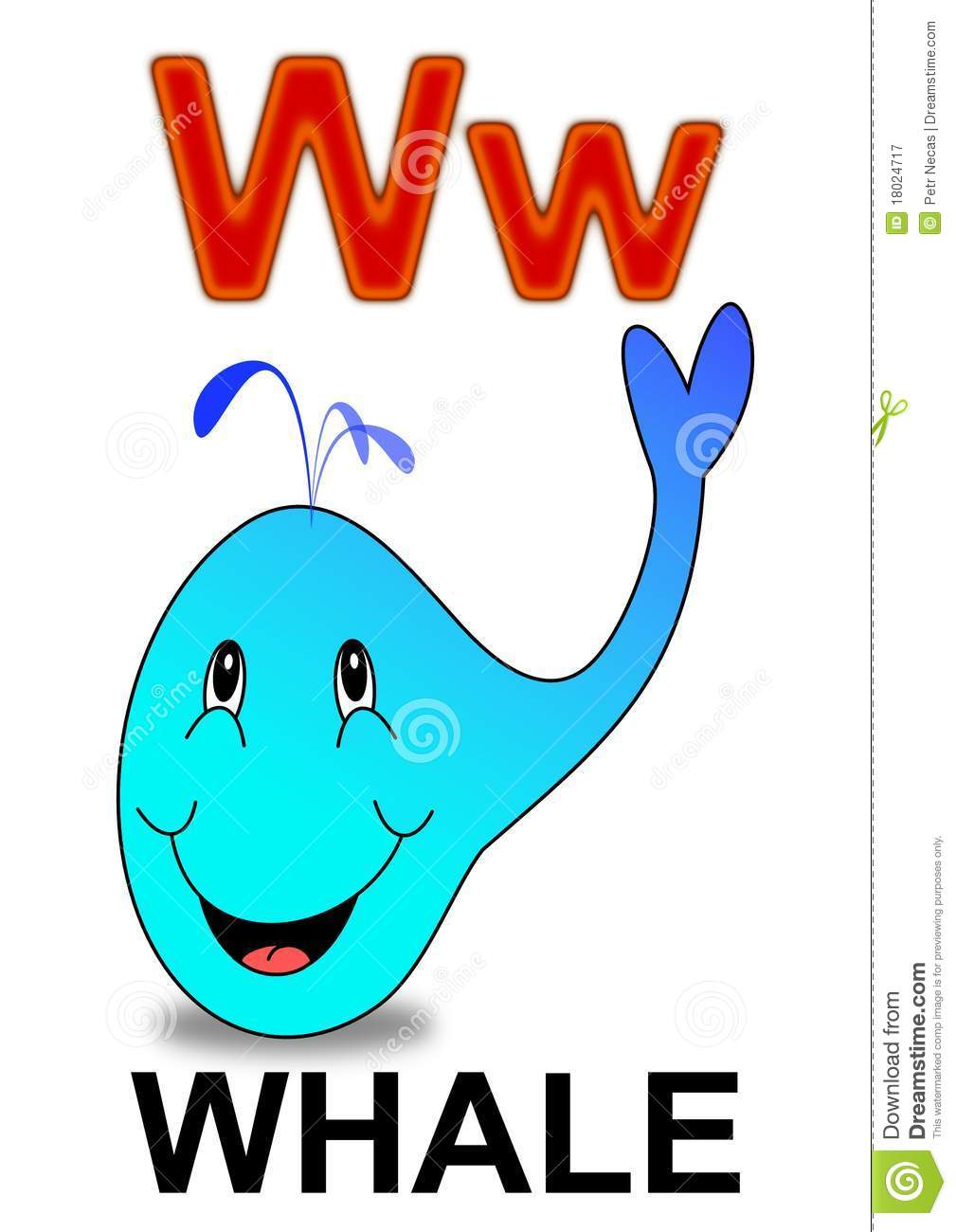 letter w whale royalty free stock photography image 18024717