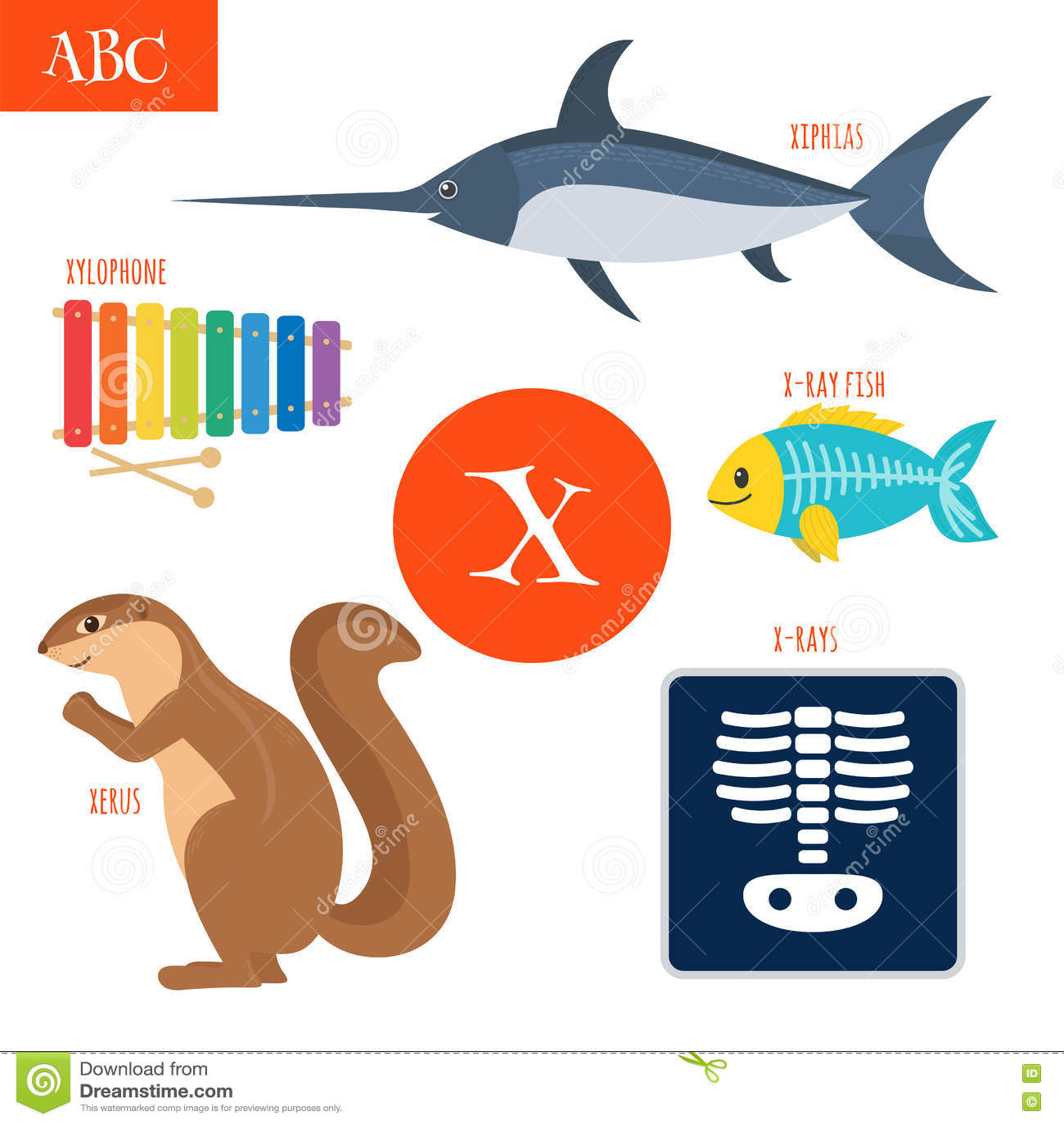 Letter X. Cartoon Alphabet For Children. Xylophone, X-rays ...