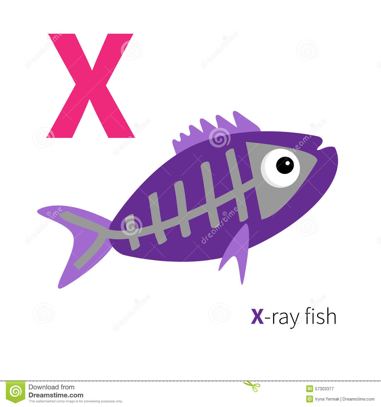 Letter x x ray fish zoo alphabet english abc with animals for X ray fish