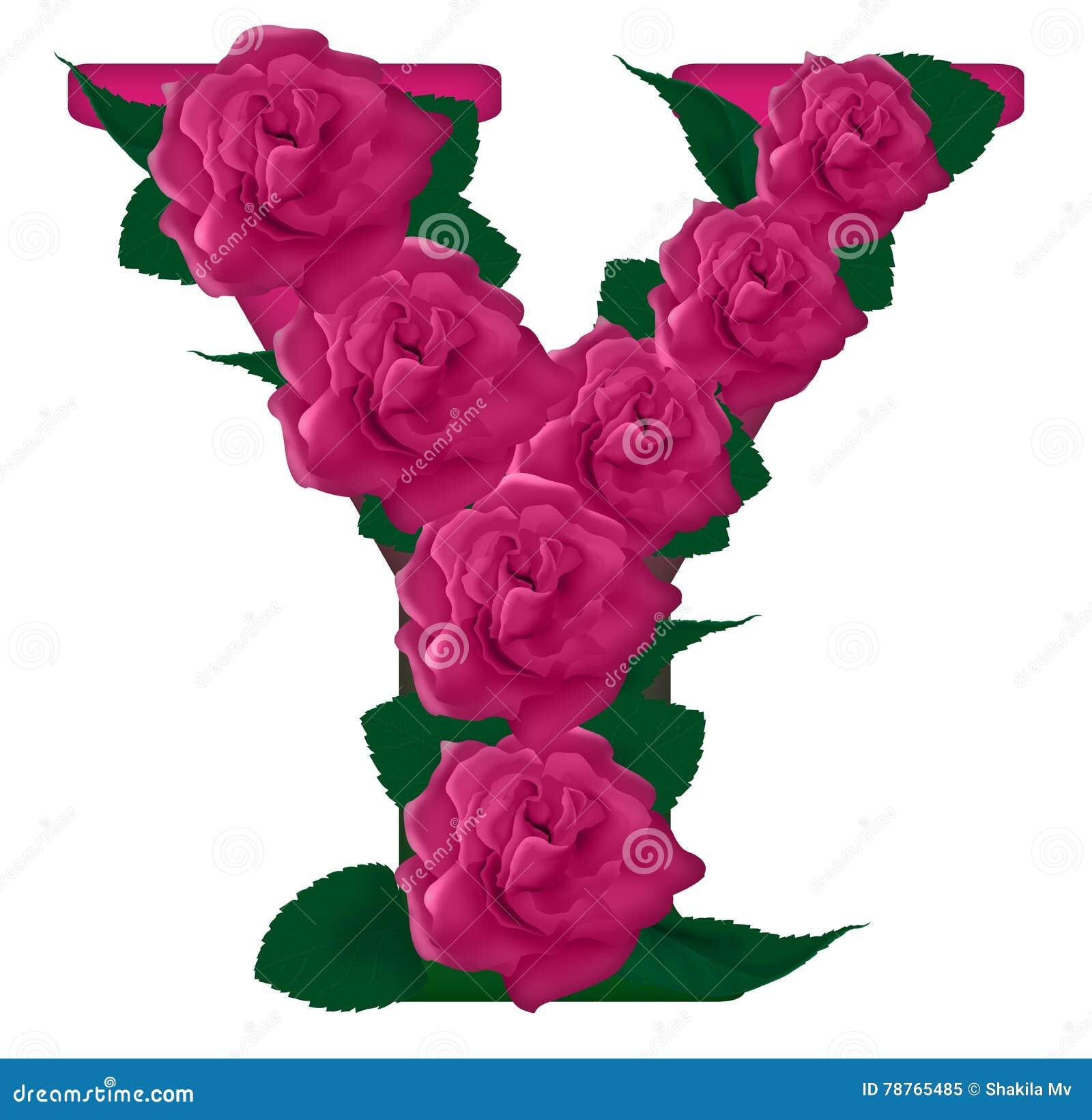 Letter y cute flower illustration stock image illustration of letter y cute flower illustration mightylinksfo