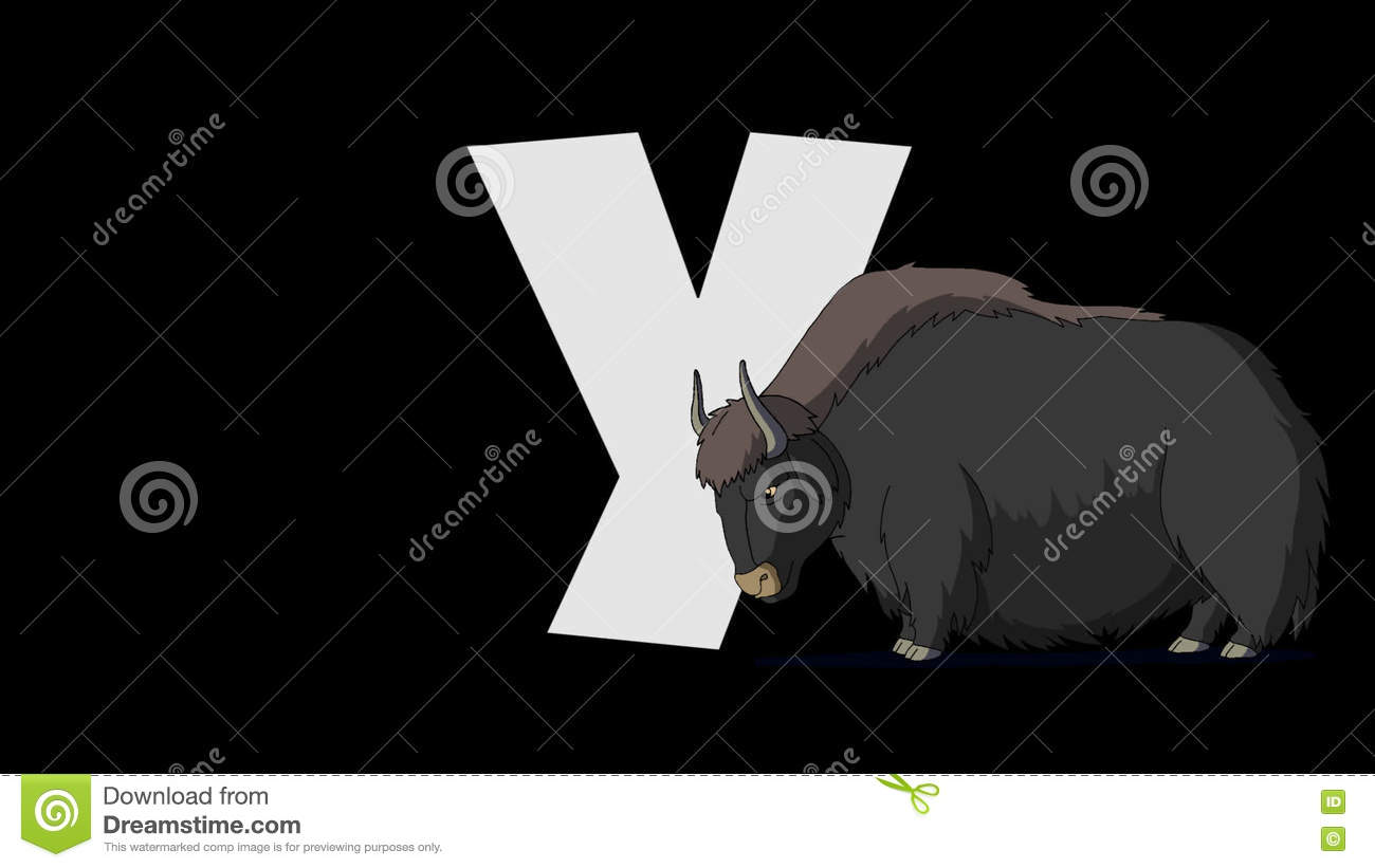 Letter y and yak foreground stock video video of background letter y and yak foreground stock video video of background isolated 70920761 thecheapjerseys Images