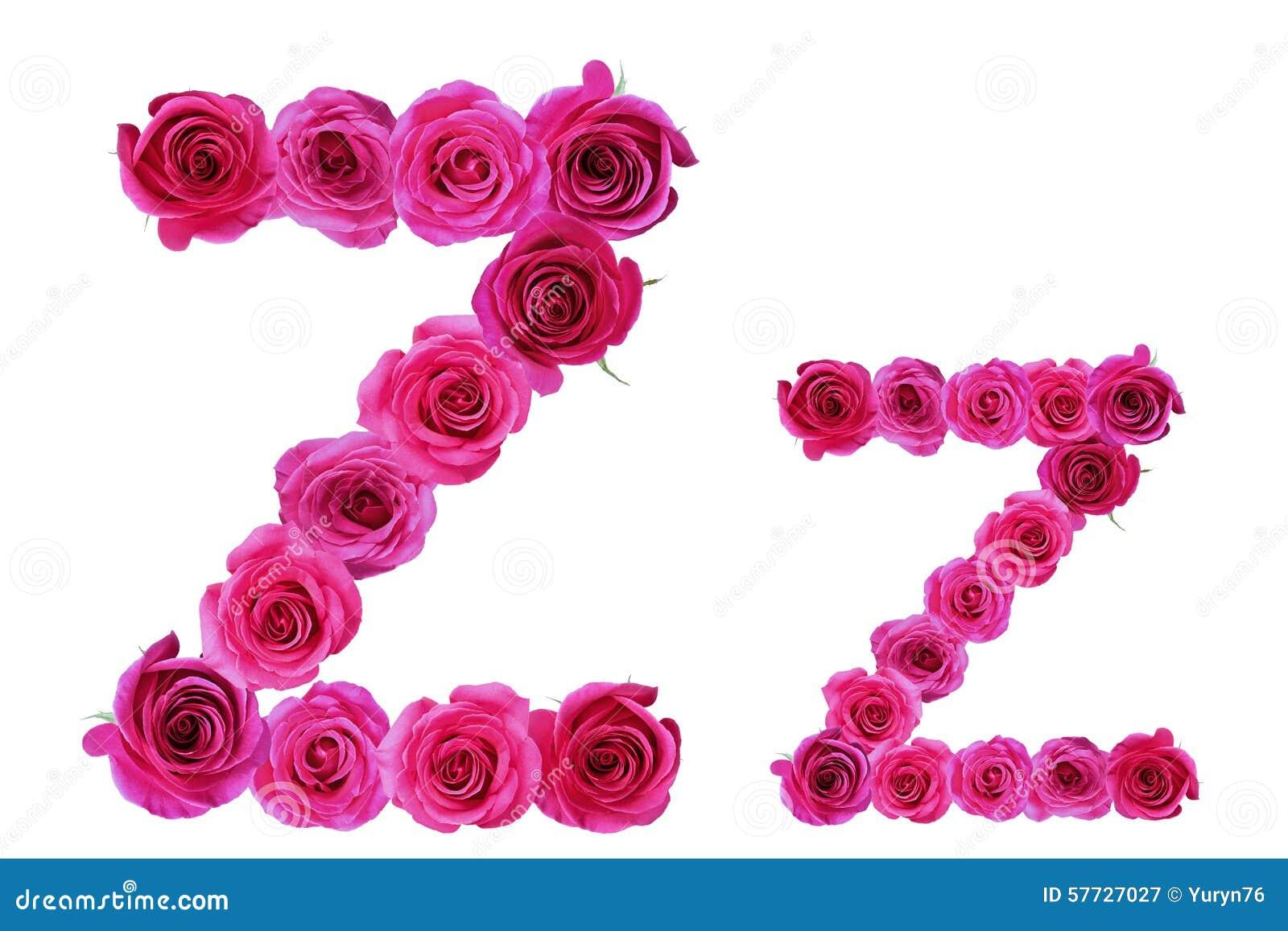 Letter z of roses stock image. Image of symbol, letter ...
