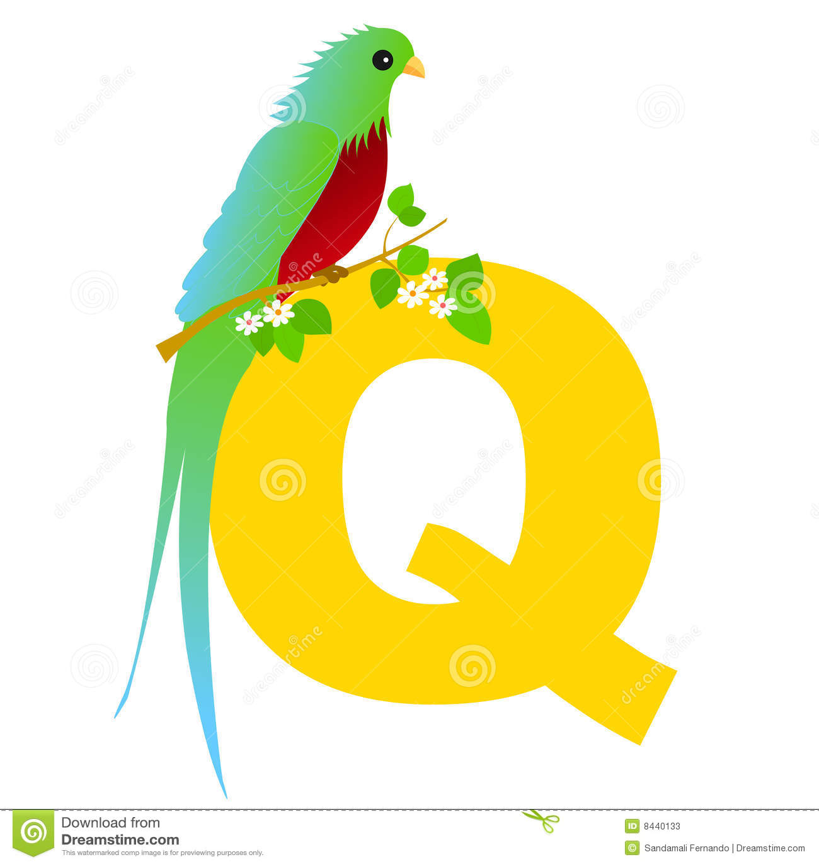 Lettera Animale Di Alfabeto Q Fotografie Stock