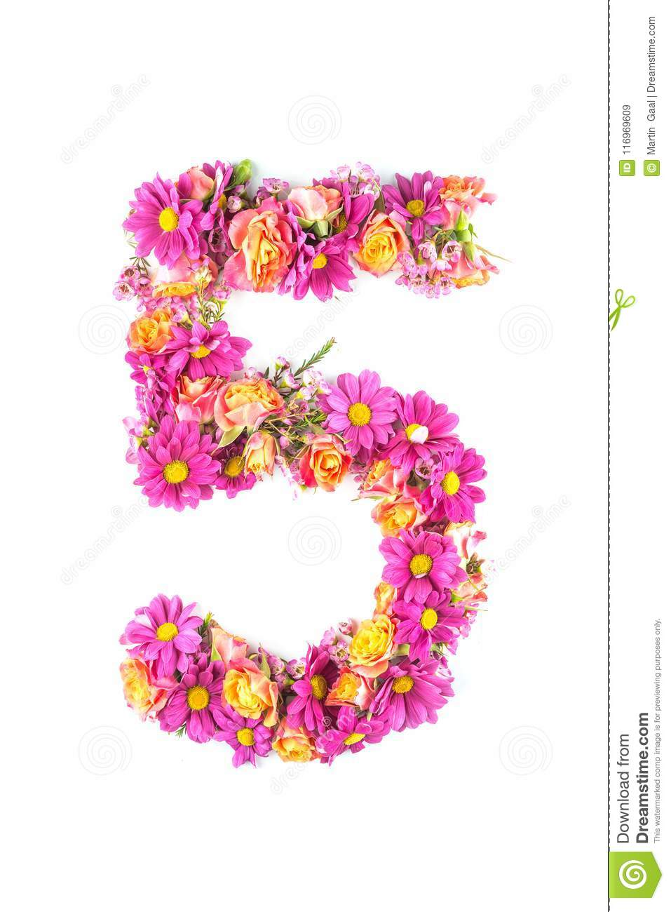 Letters and numbers made from live flowers isolated on white background, make text with flowers alphabet, exclusive idea for graph