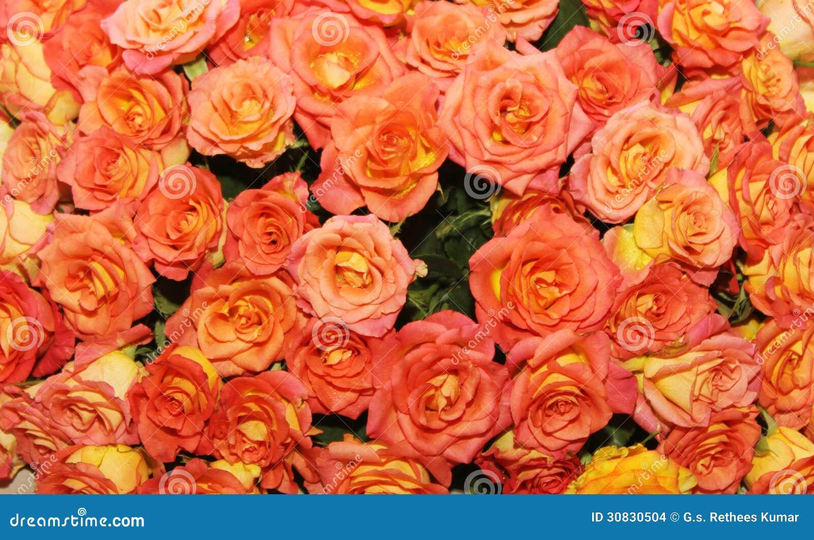 Letto di Rosa