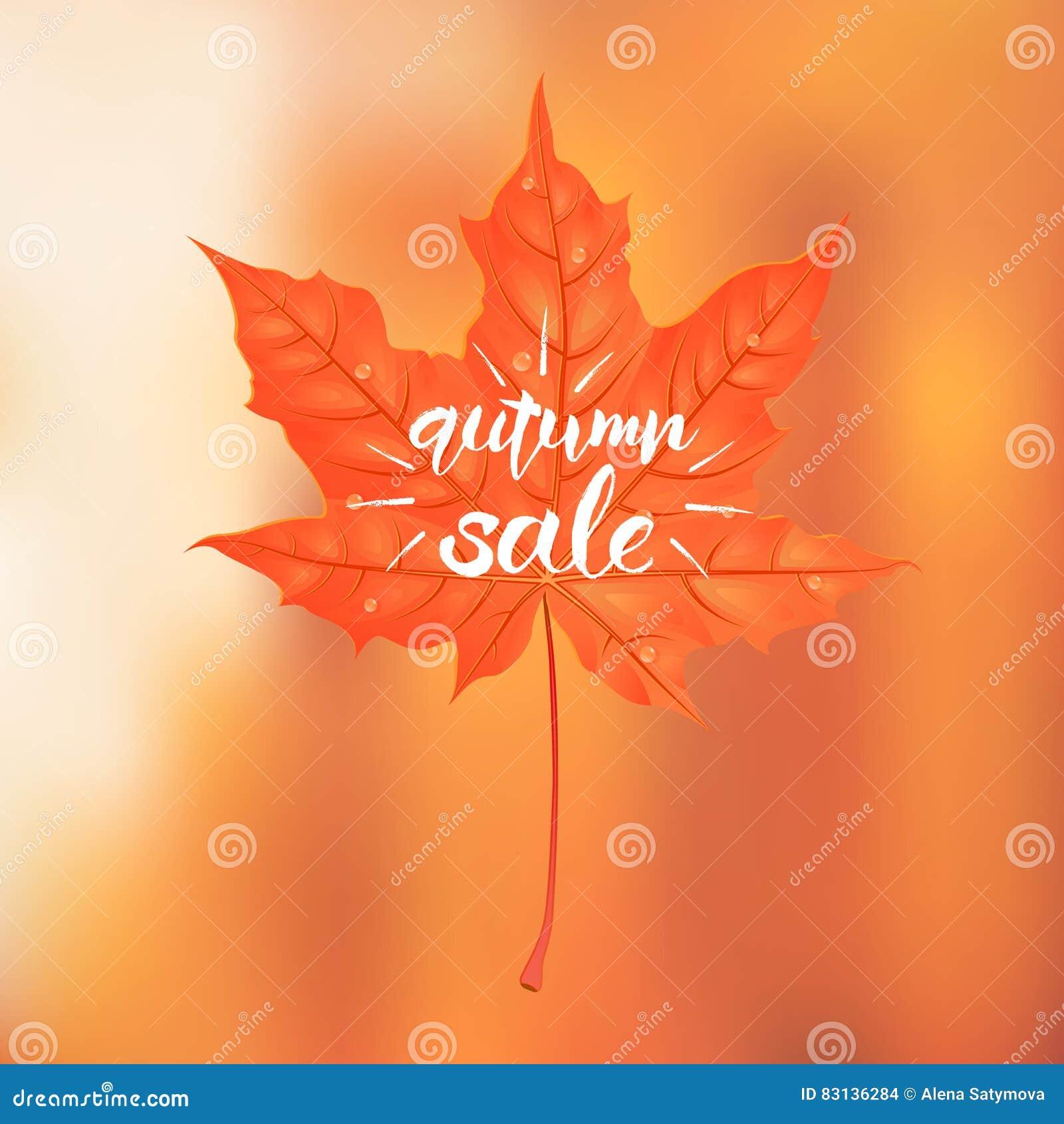 Lettrage tiré par la main d une expression Autumn Sale Vecteur Illustratio