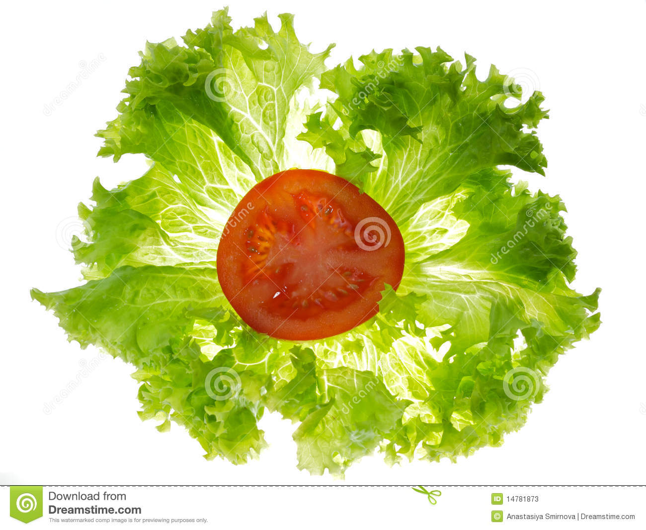 Displaying (17) Gallery Images For Lettuce Slice...