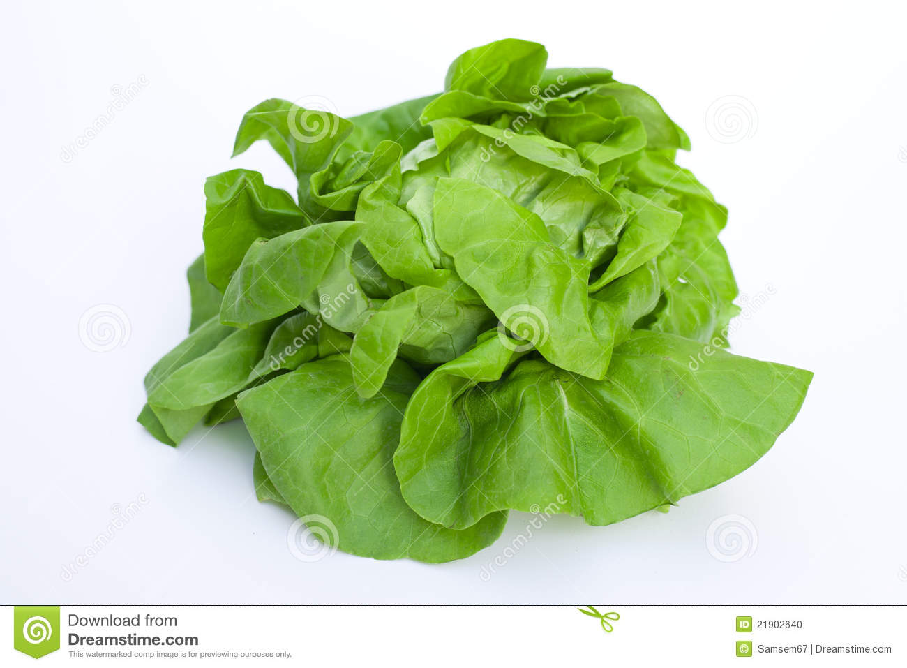 Leafy No-Lettuce Salad Recipes — Dishmaps