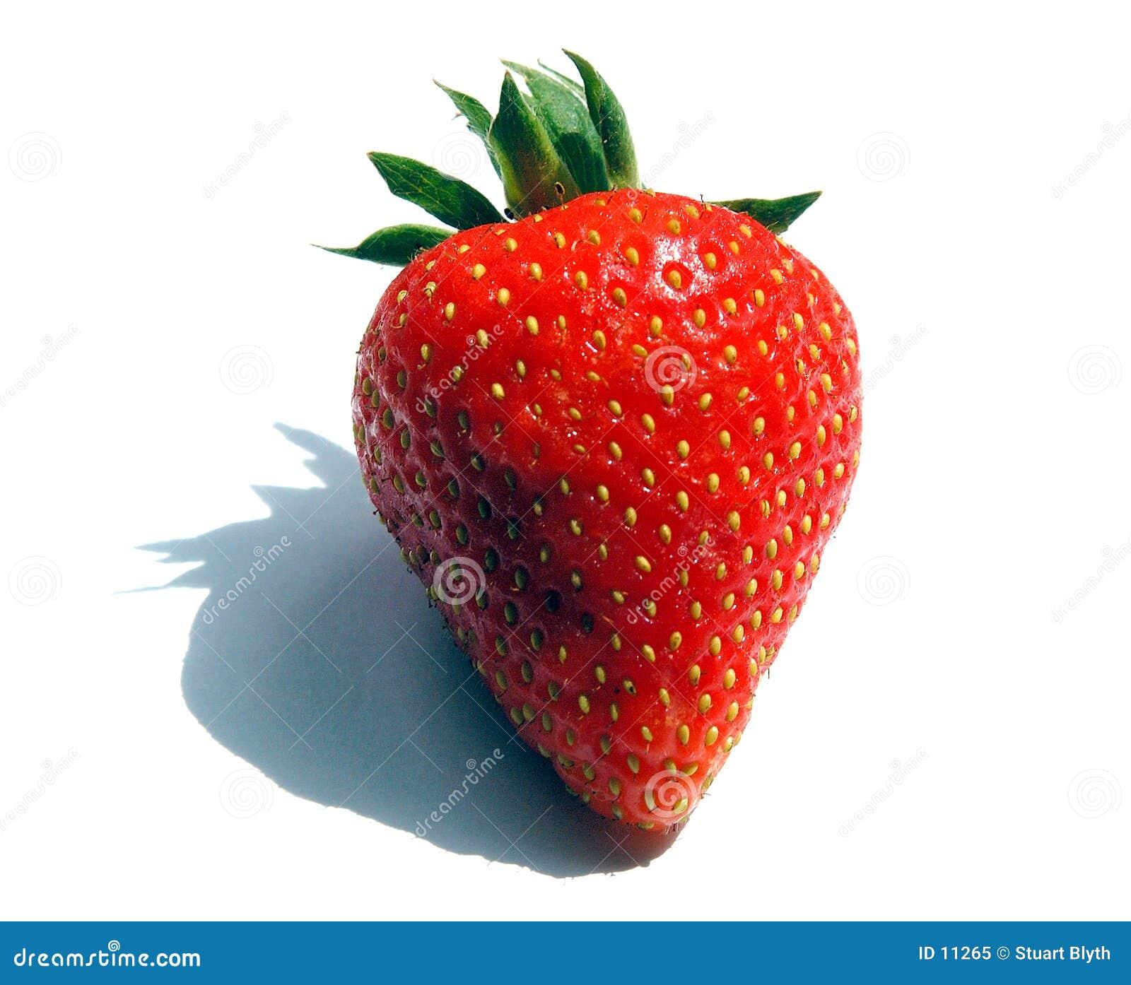 Letzte Erdbeere