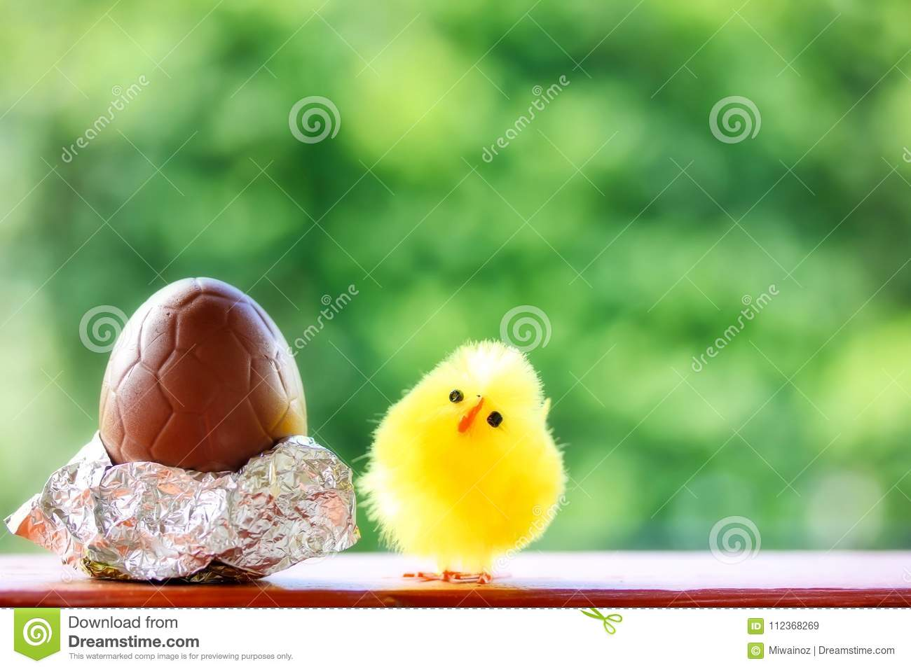 Leuk Pluizig Chick And Chocolate Egg For Pasen