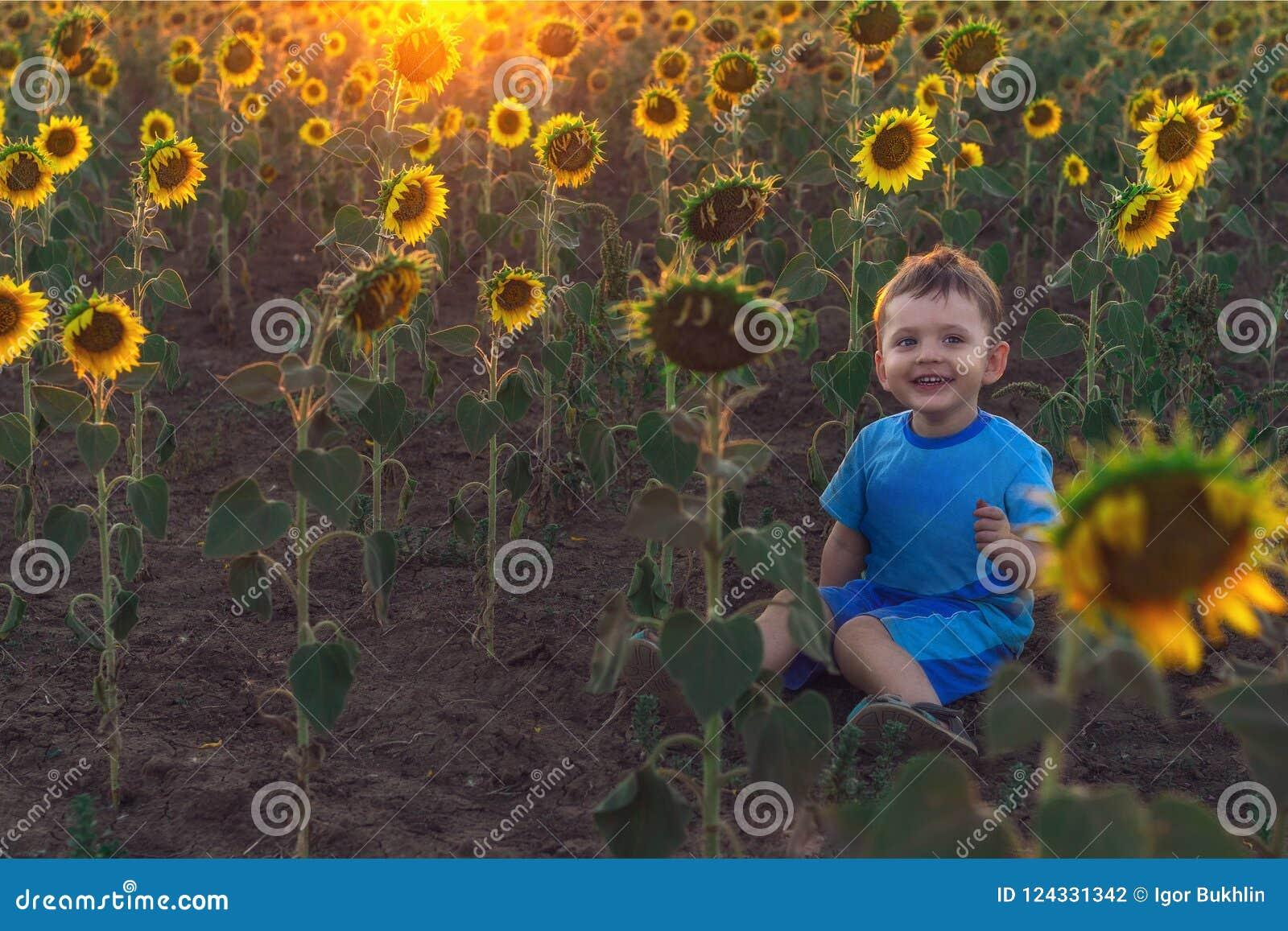 Leuk weinig jongenszitting ter plaatse op een gebied met zonnebloemen bij zonsondergang Het concept gelukkige kinderjaren Openluc