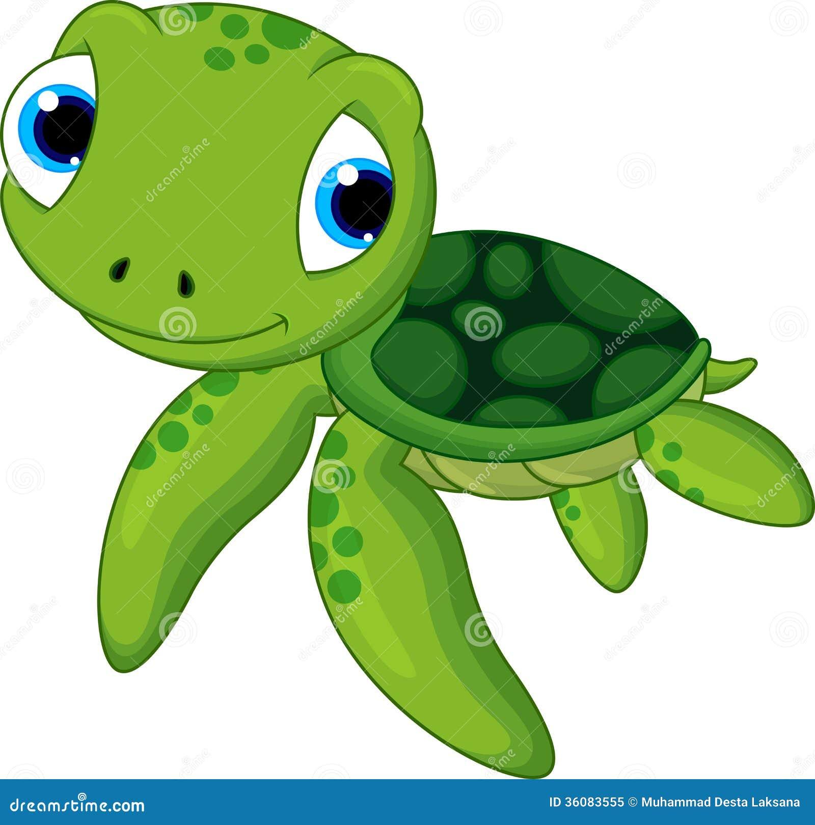 Leuke babyschildpad