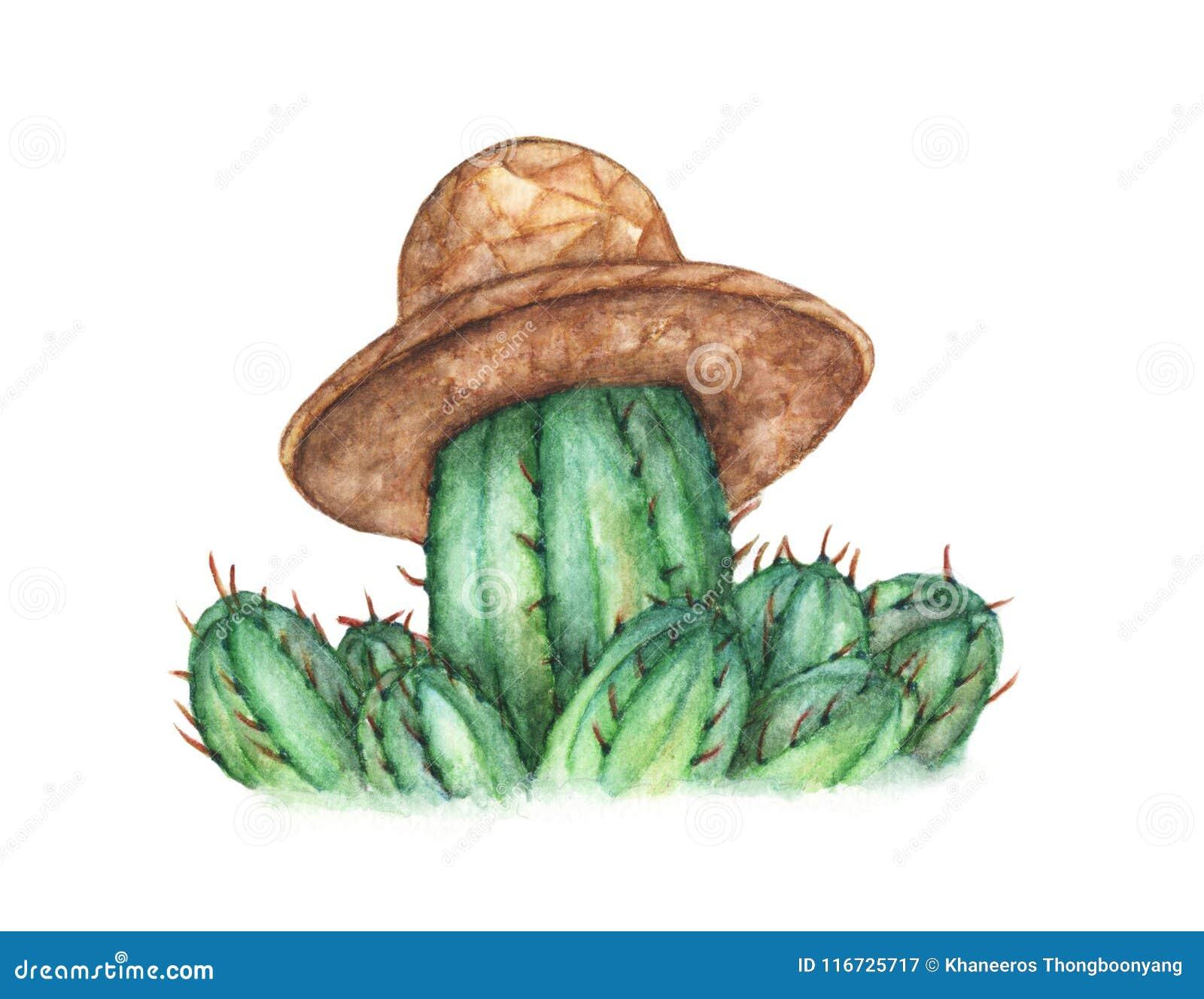 Leuke cactus met strohoed op witte achtergrond, Waterverfillustratie