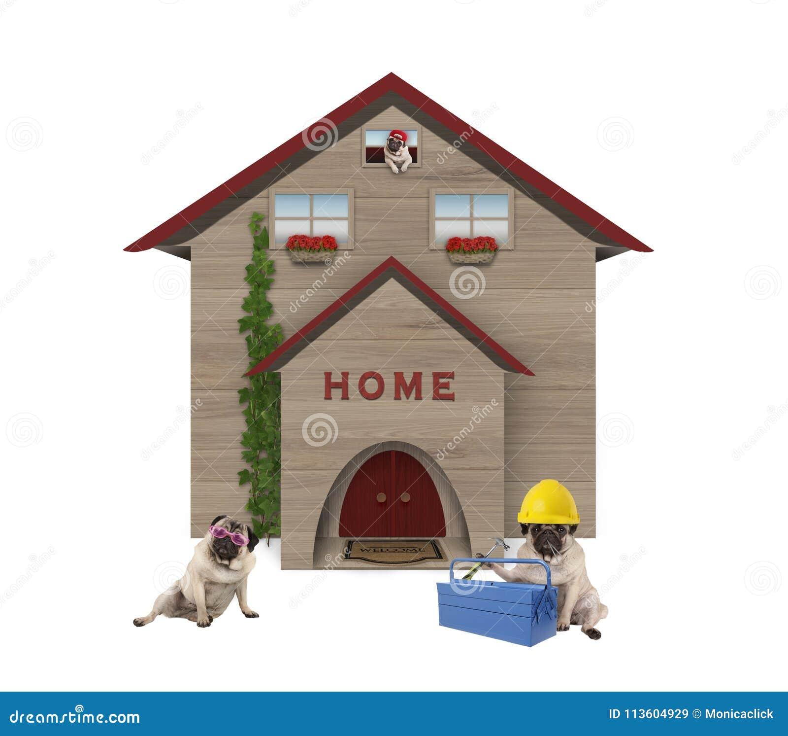 Leuke gemiddelde arbeidende klassepug familiy hond, gaand zitten voor hun vernieuwd huis