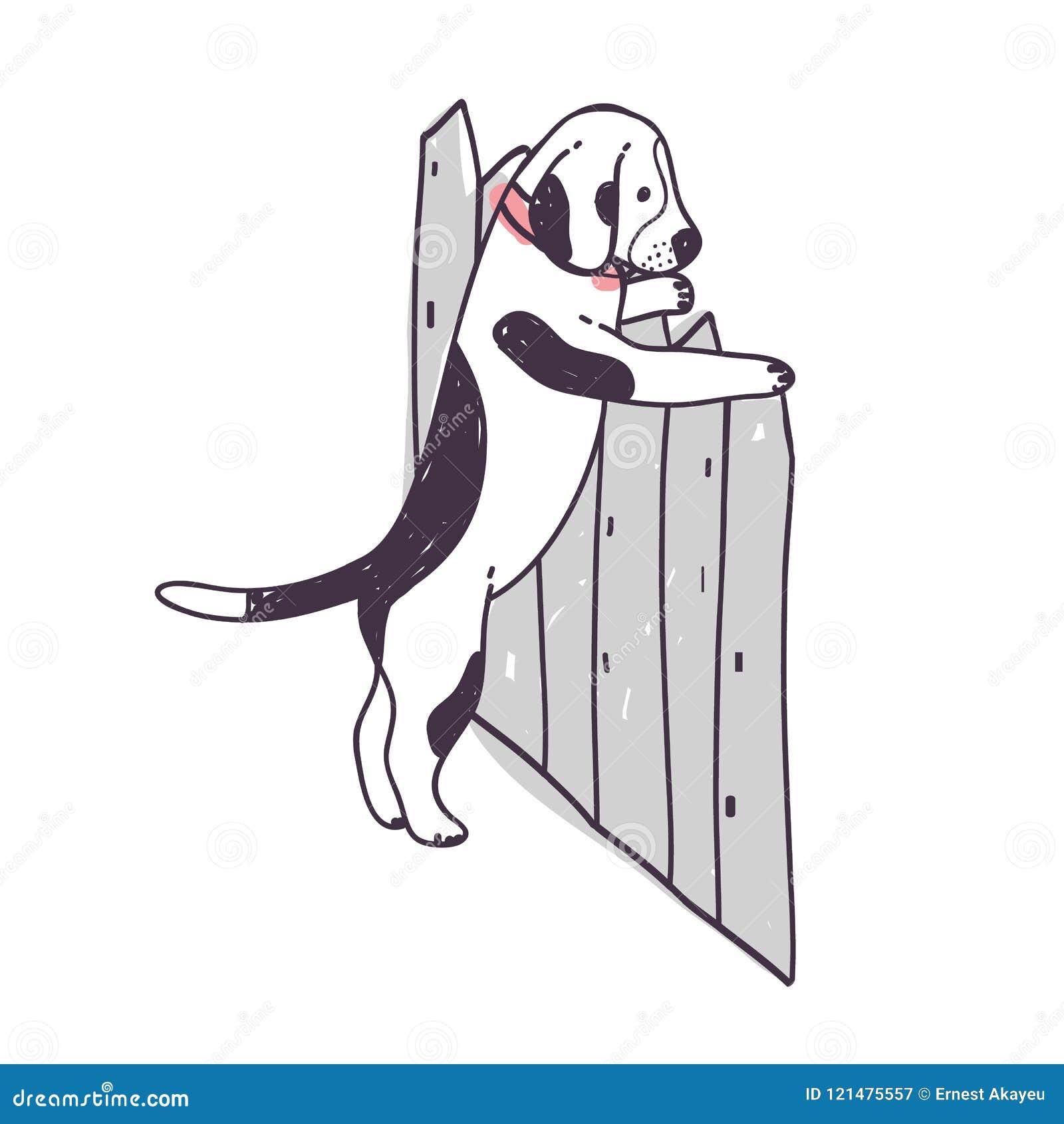 Leuke hond die over omheining en vlucht proberen te beklimmen Grappig ongehoorzaam van een hond of puppy geïsoleerd op witte acht