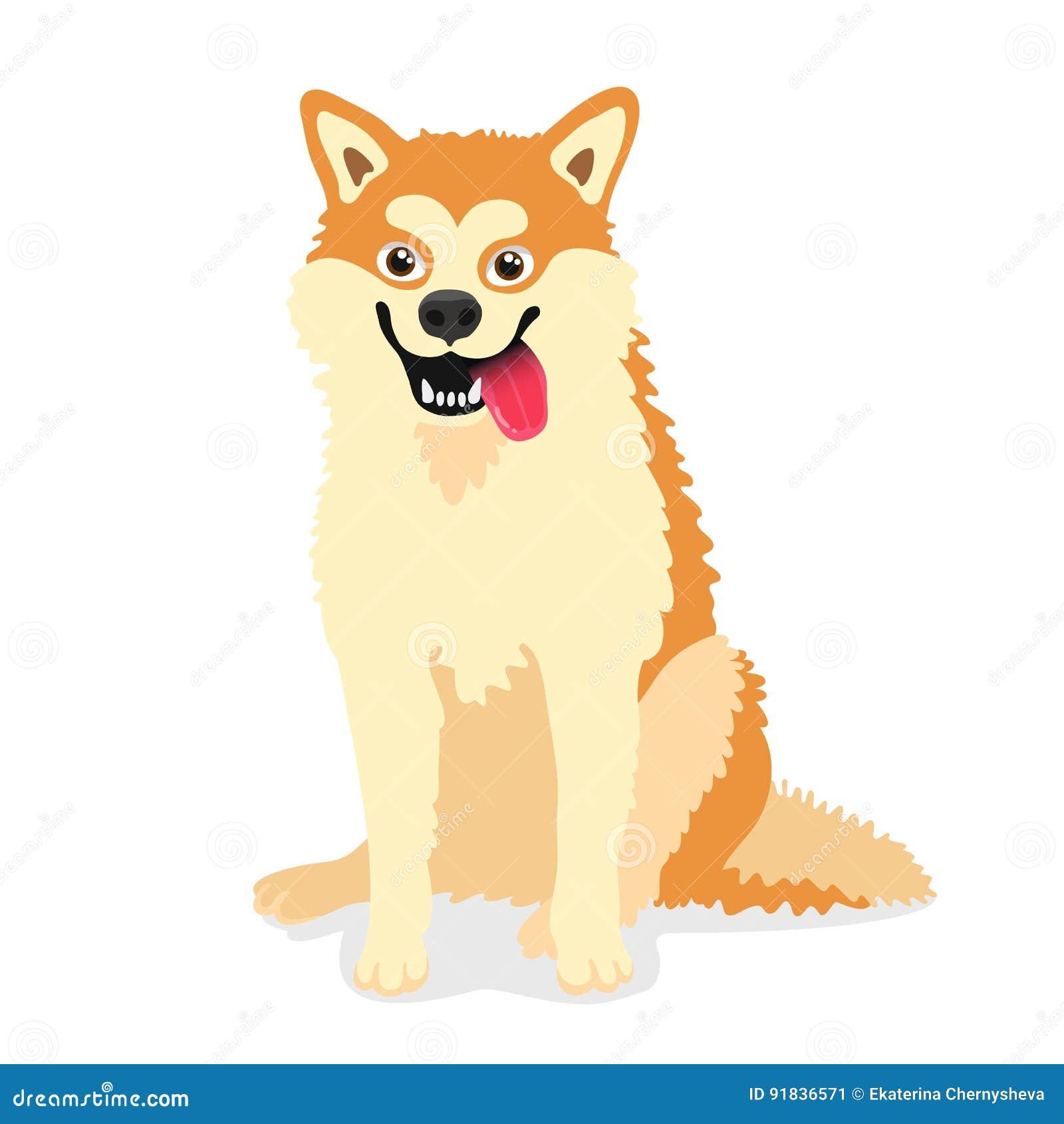 Leuke hond van inu van rassenakita