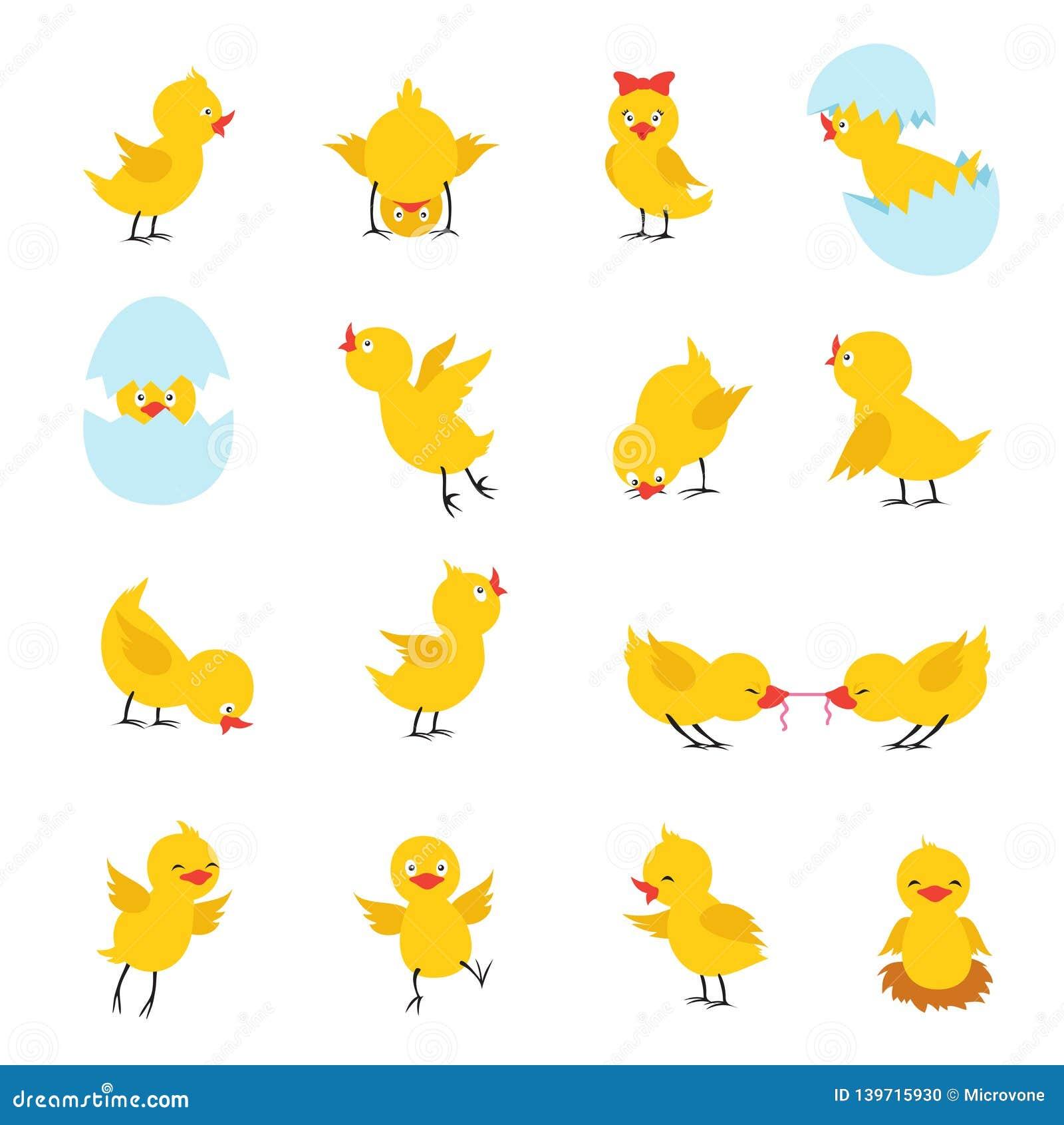 Leuke Kuikens De babykippen van beeldverhaalpasen met eieren Grappige gele kuikenvector geïsoleerde karakters