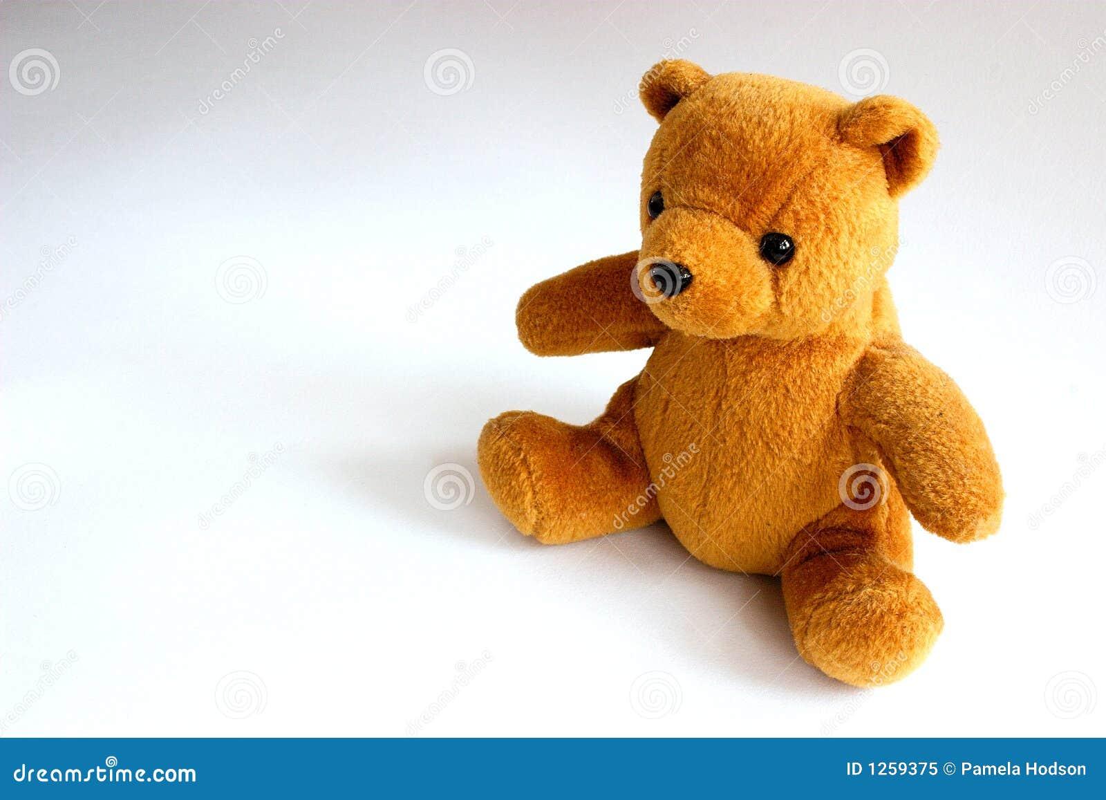 Leuke teddy