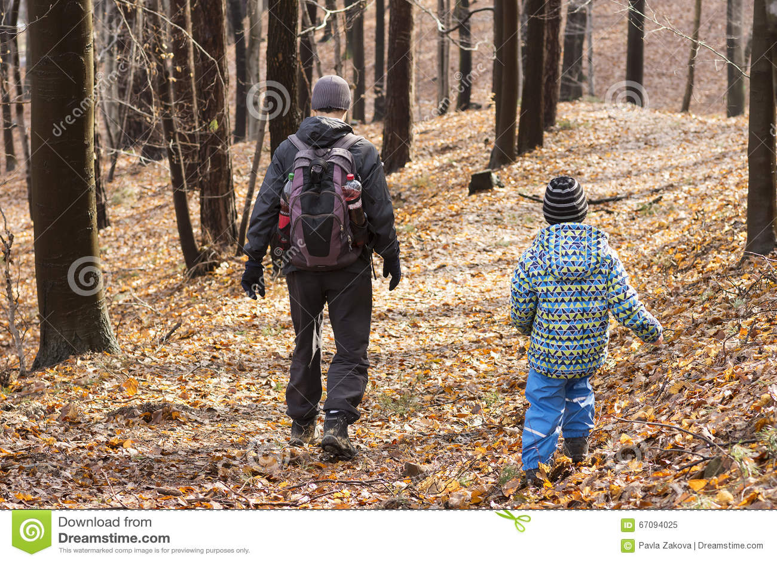 Leute, die in Wald gehen
