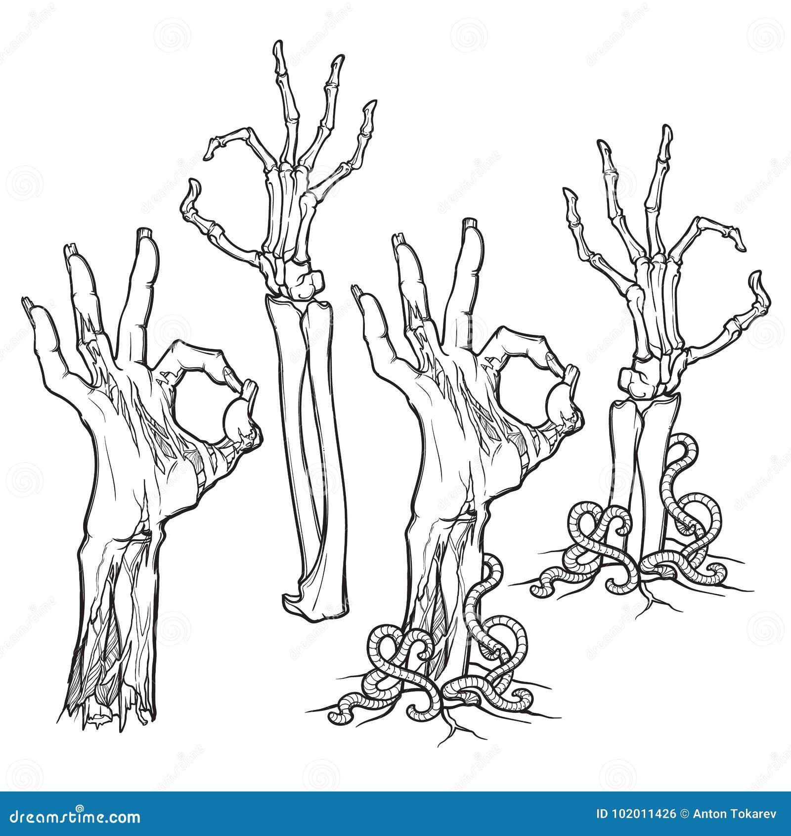 Levande dödkroppsspråk hand isolerad ok teckenwhitekvinna naturtrogen återgivning av ruttna