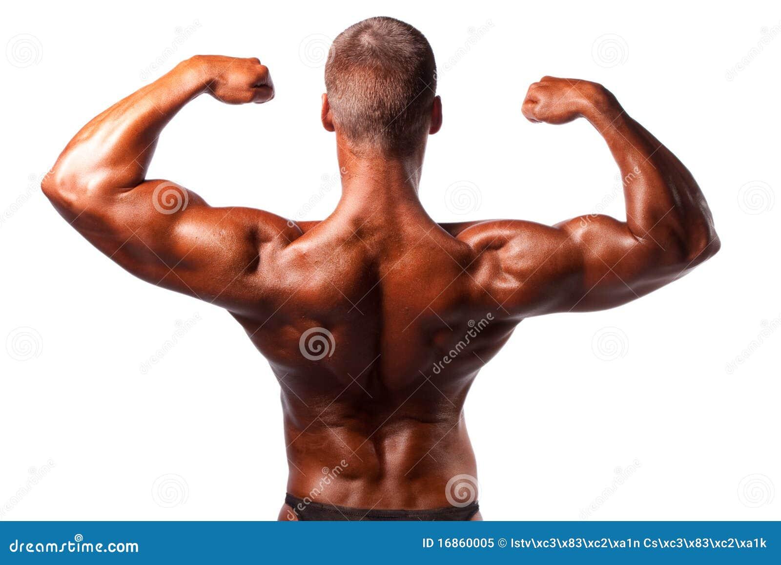 Levantamento do Bodybuilder
