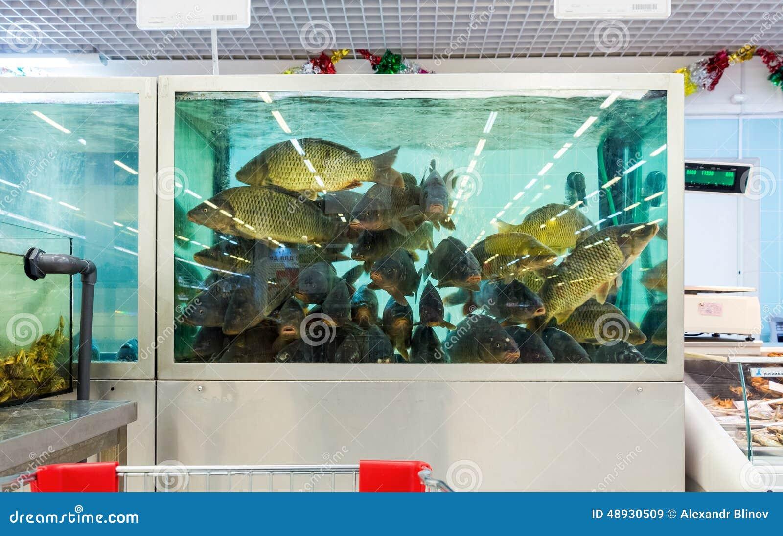 Levende vissen klaar voor verkoop in hypermarket redactionele stock afbeelding afbeelding - Outs idee open voor levende ...