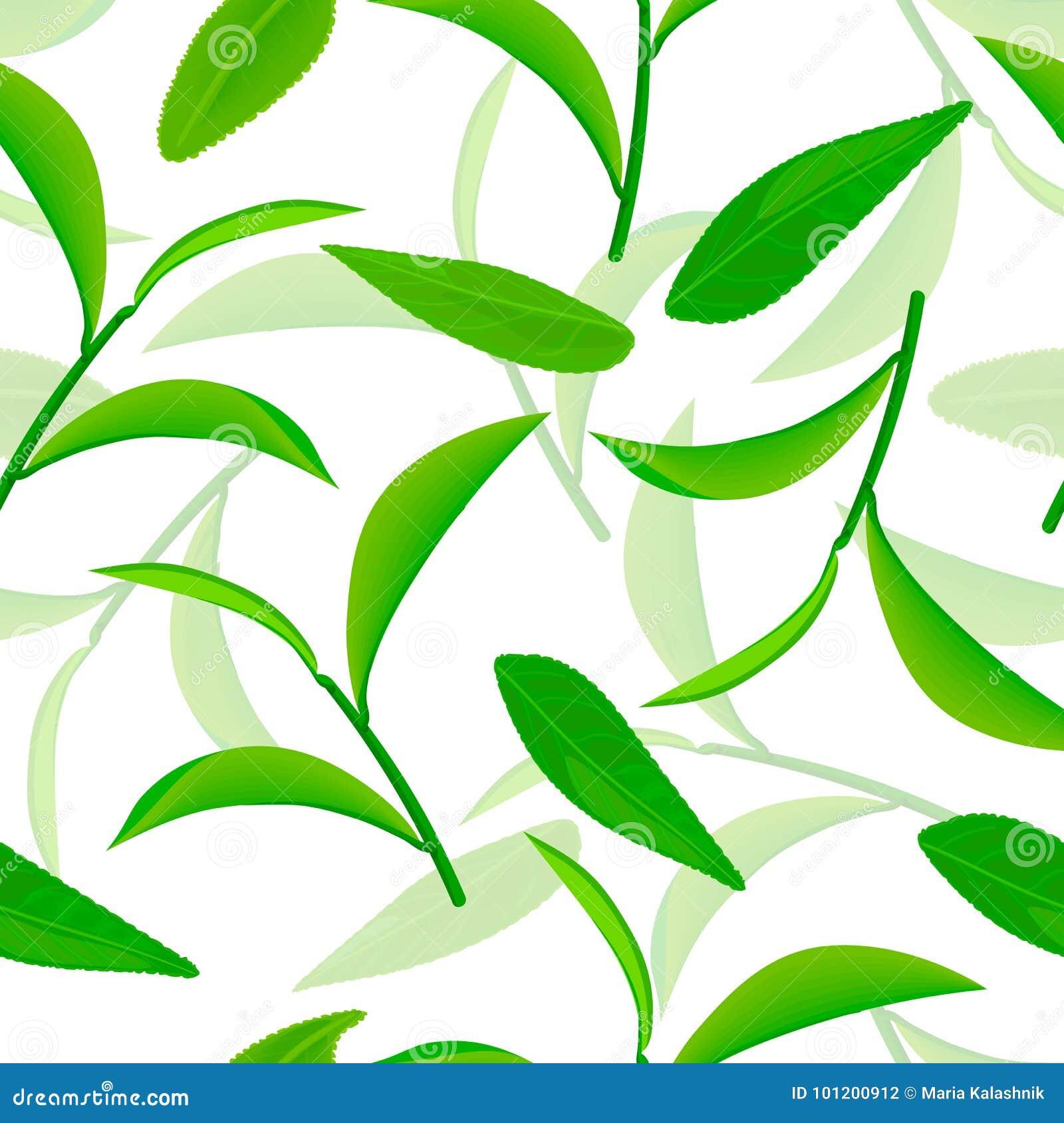 Levendig vliegende groene theebladen, Naadloos vectorpatroon witte 3d illustratie als achtergrond