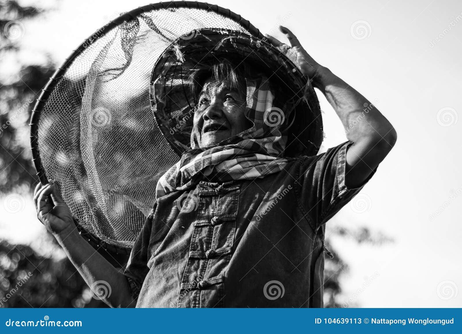 Download Levensstijl Van Concepten De Thaise Landbouwers Stock Afbeelding - Afbeelding bestaande uit groen, blad: 104639113
