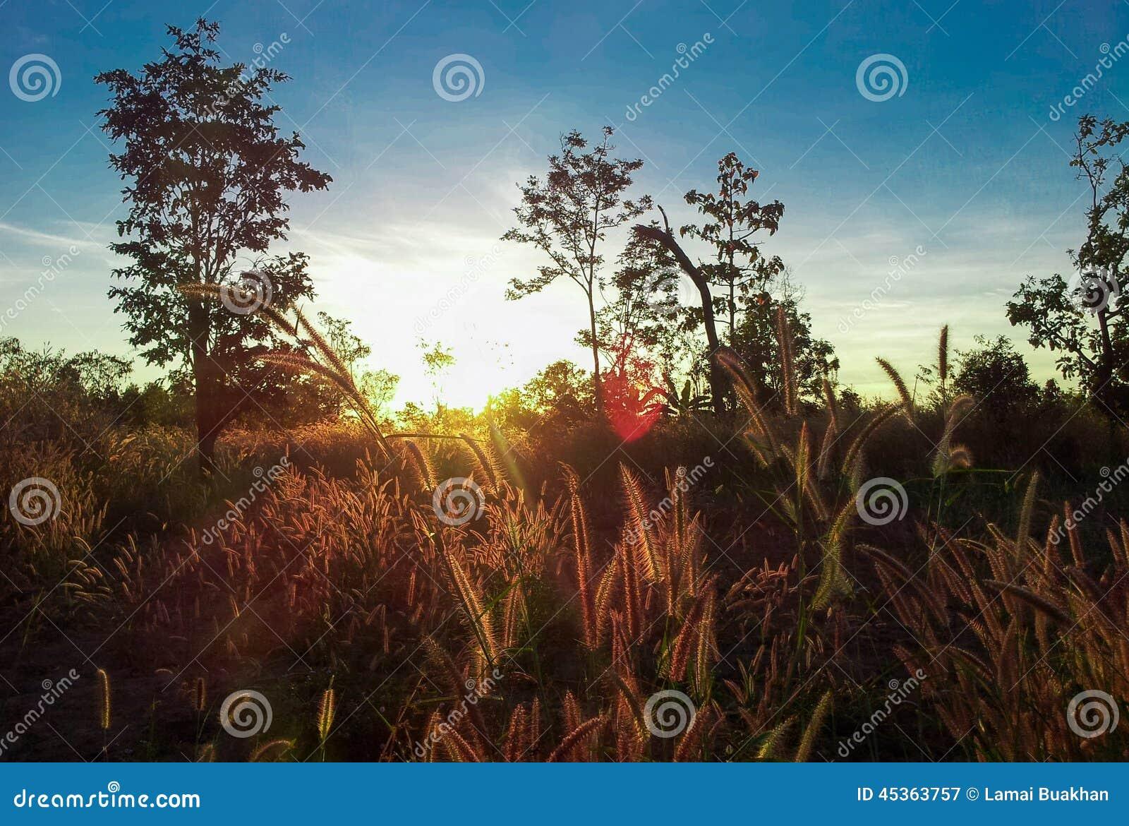 Lever de soleil 12
