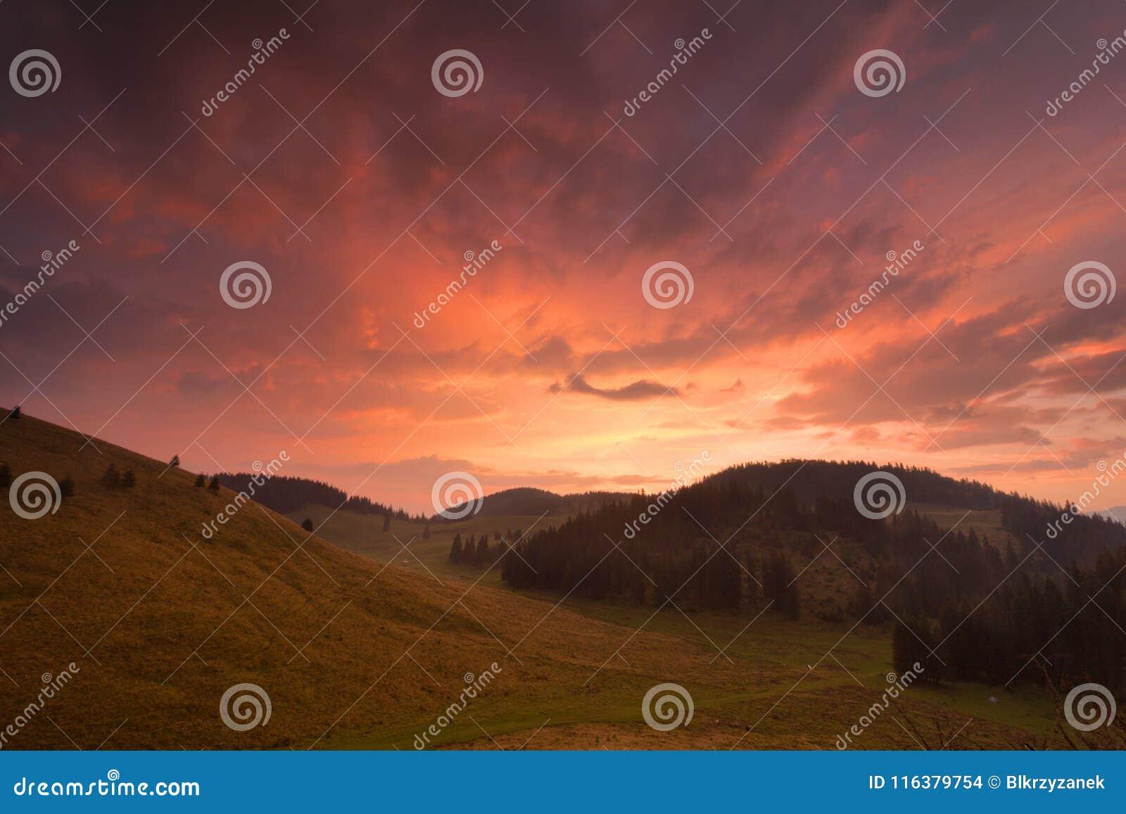 Lever de soleil après pluie sur un pâturage de montagne en Roumanie