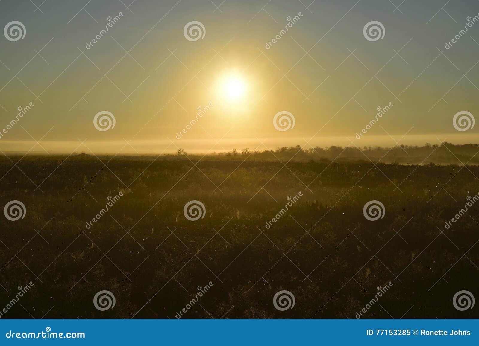 Lever de soleil au-dessus d un étang