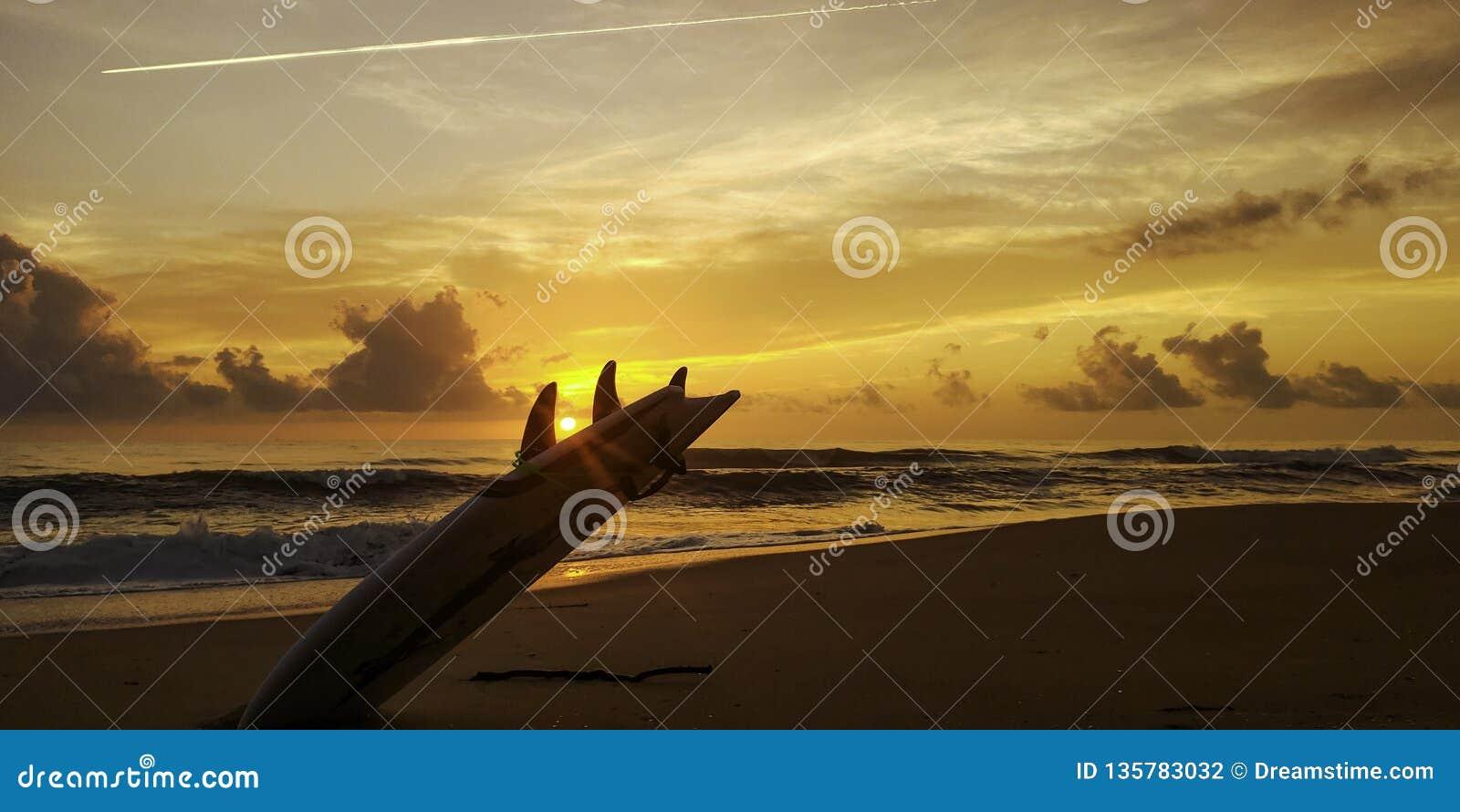 Lever de soleil avec la planche de surf