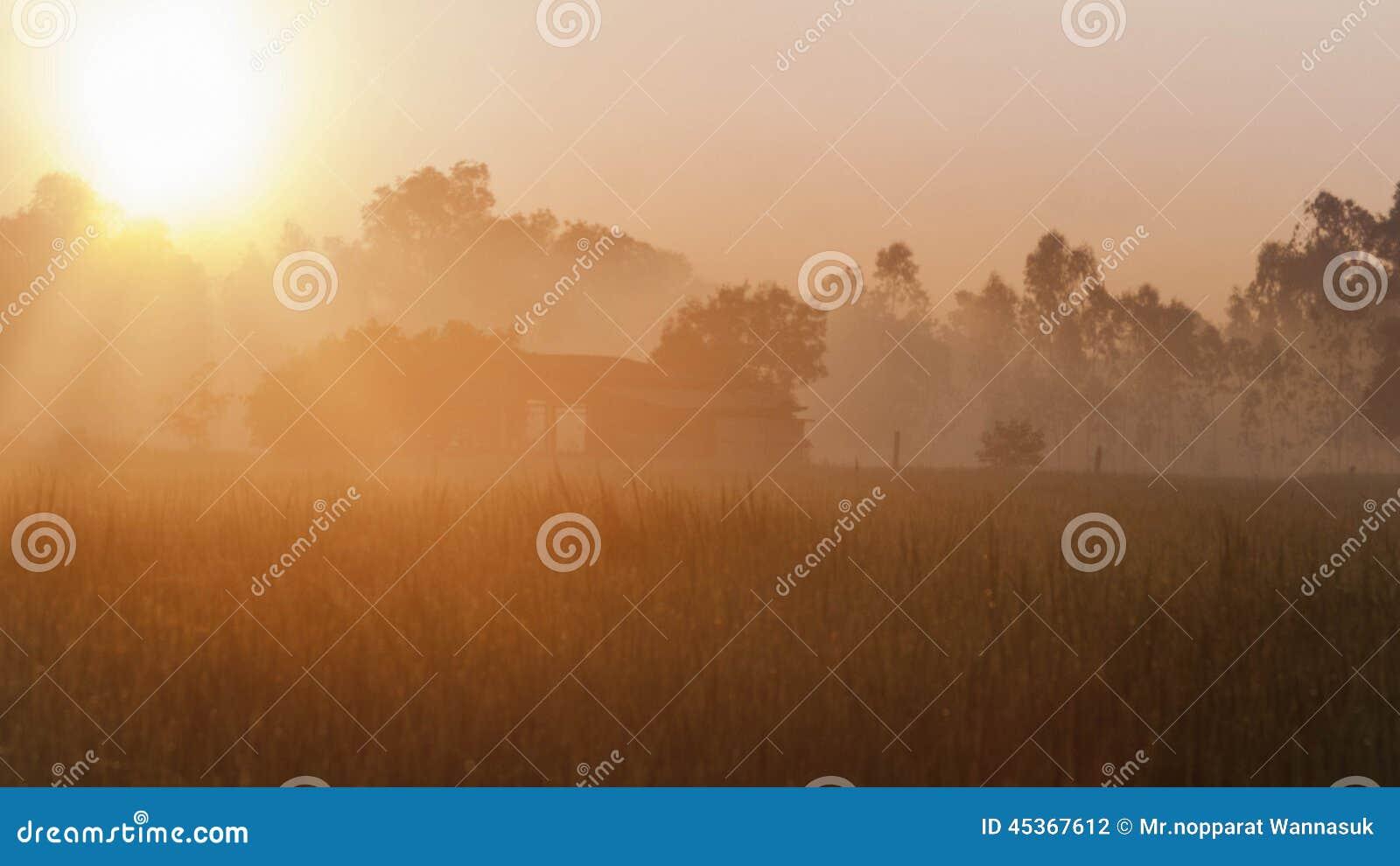 Lever de soleil de champs