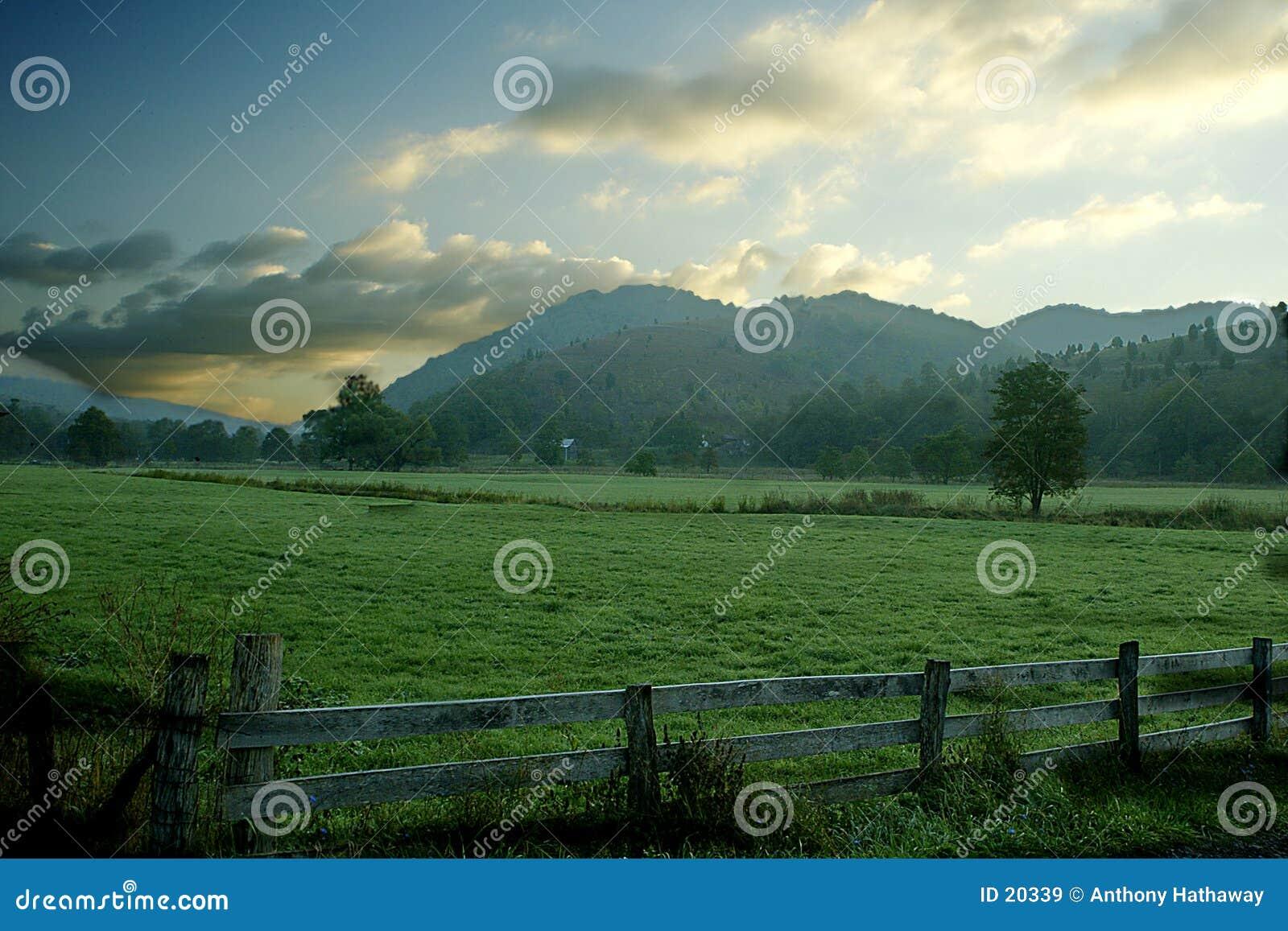 Lever de soleil pastoral