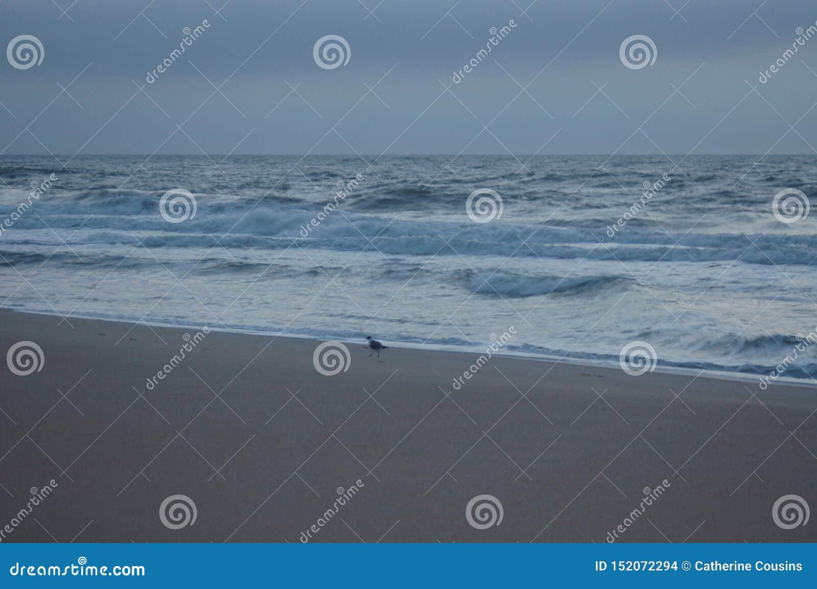 Lever de soleil sur l océan, le ciel blanc, et le sable
