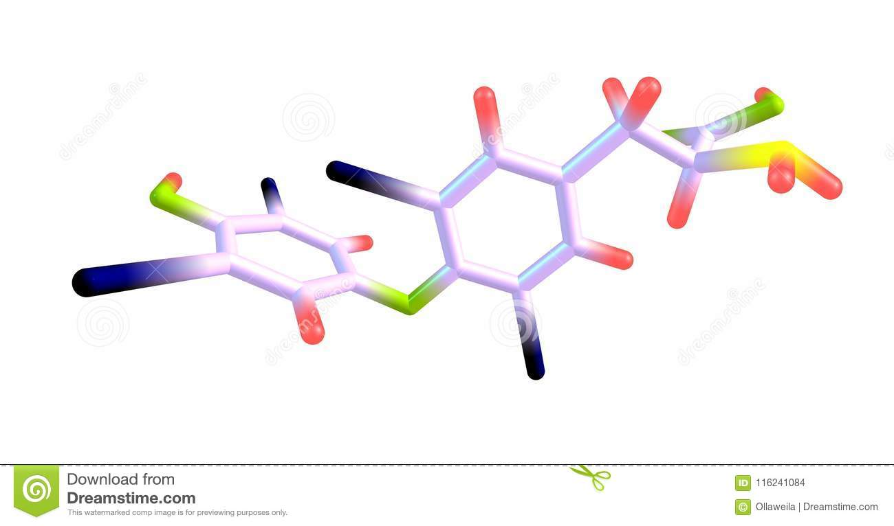Levothyroxine Molecular Structure Isolated On White Stock