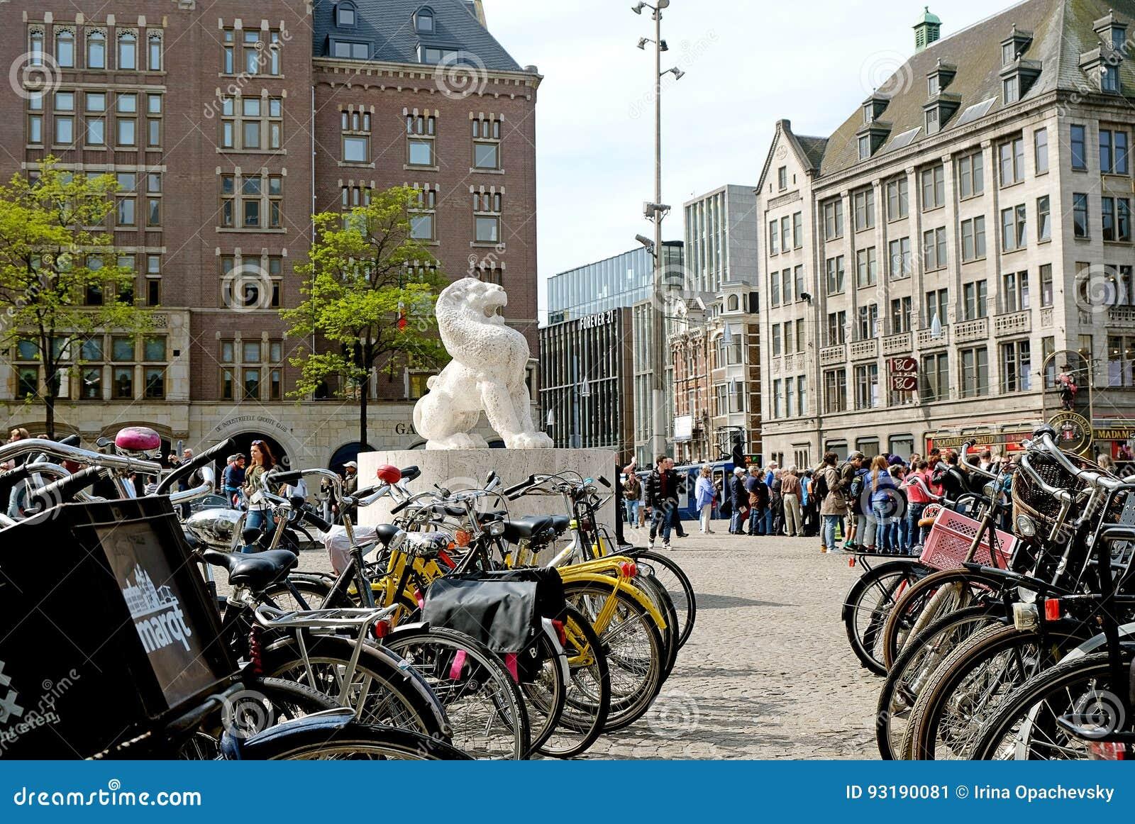 Lew w tama kwadracie w Amsterdam