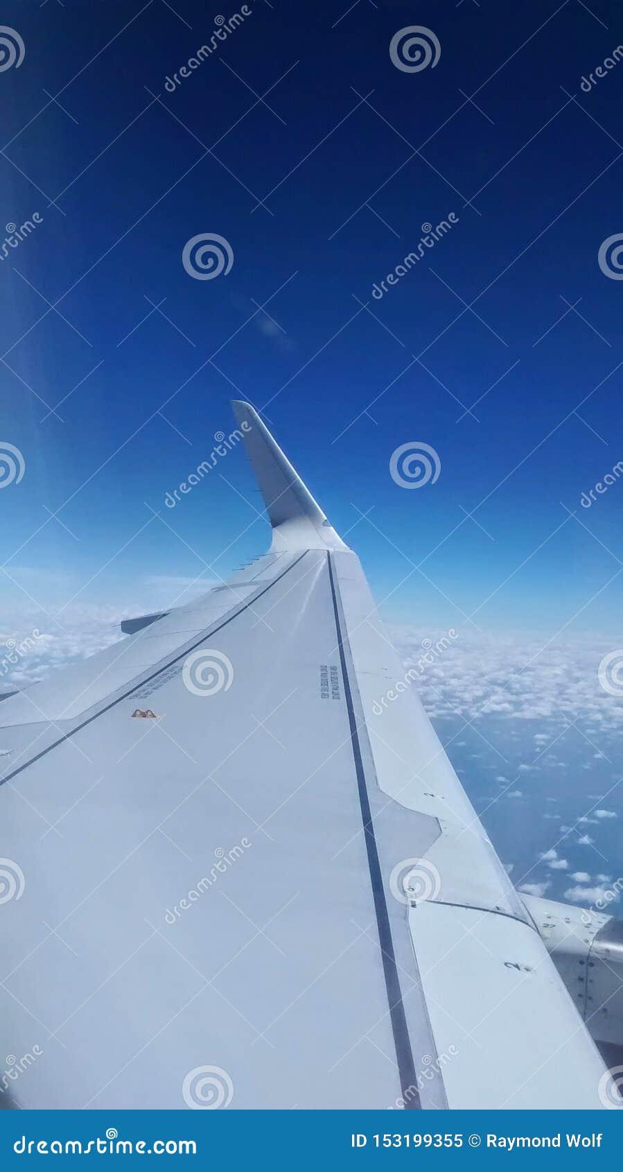 Lewe skrzydło partii samolot
