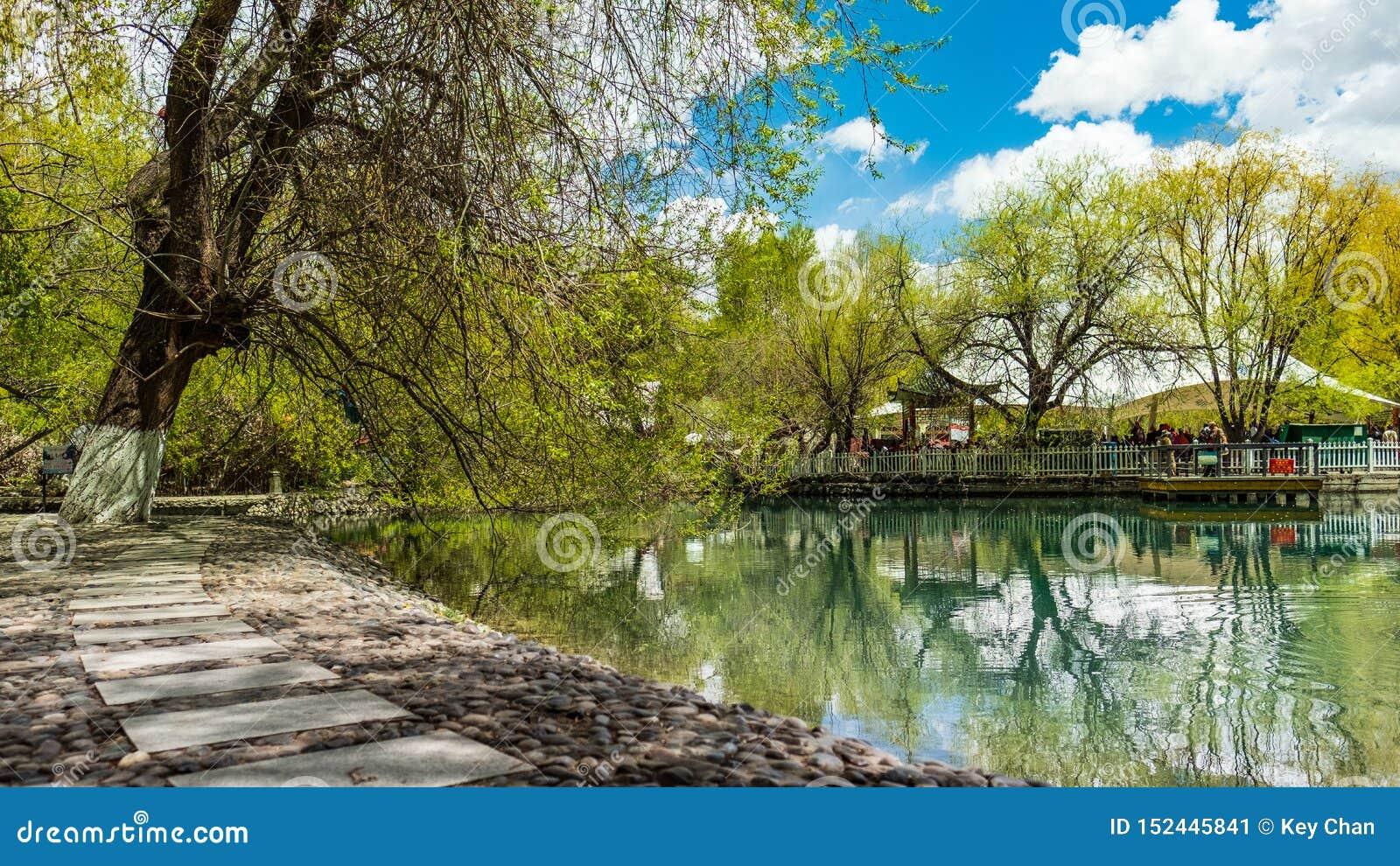 Lhasa Lukhang träd för blå himmel