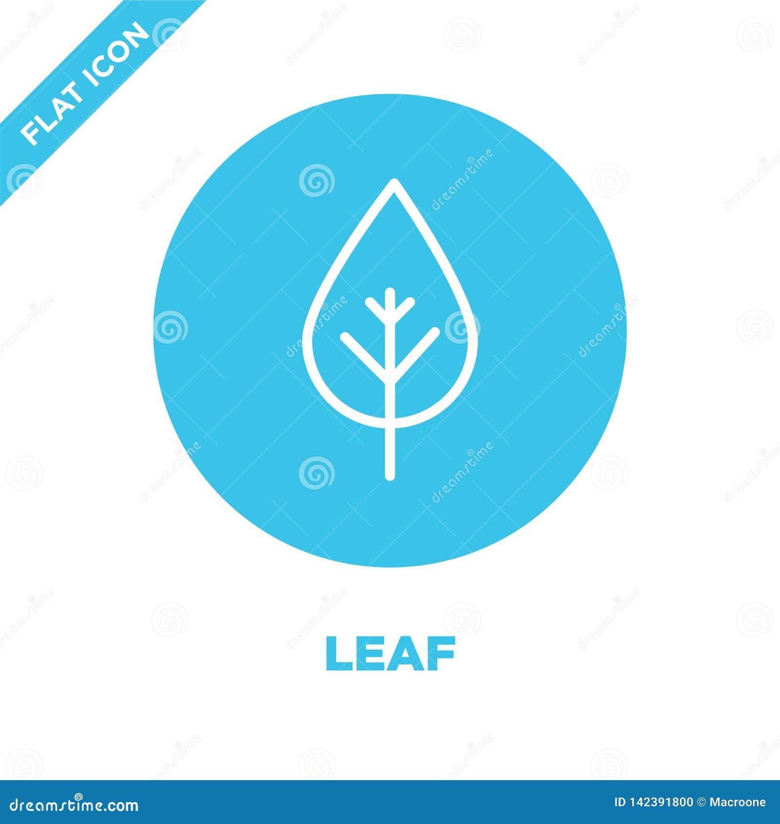 Liść ikony wektor od sezonów inkasowych Cienka kreskowa liścia konturu ikony wektoru ilustracja Liniowy symbol dla używa na sieci