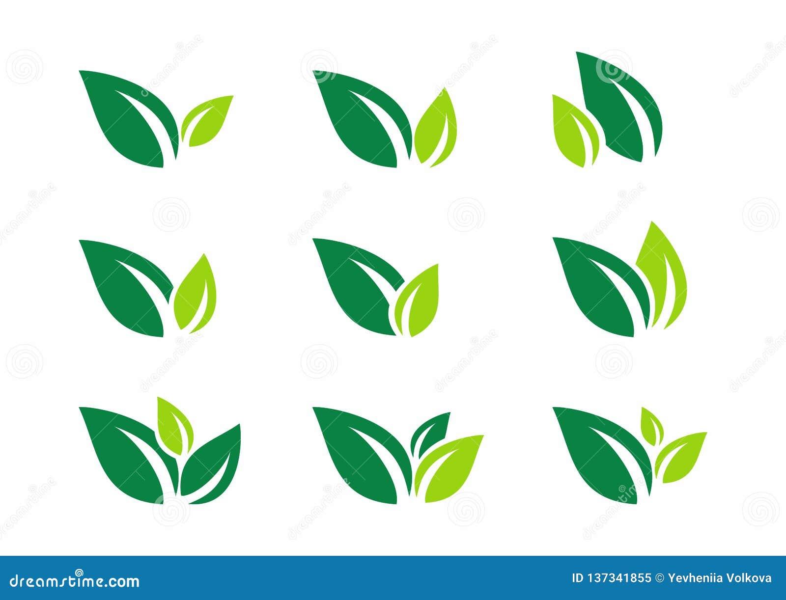 Liść, roślina, logo, ekologia, wellness, zieleń, liście, natura symbolu ikona ustawiająca wektorowi projekty